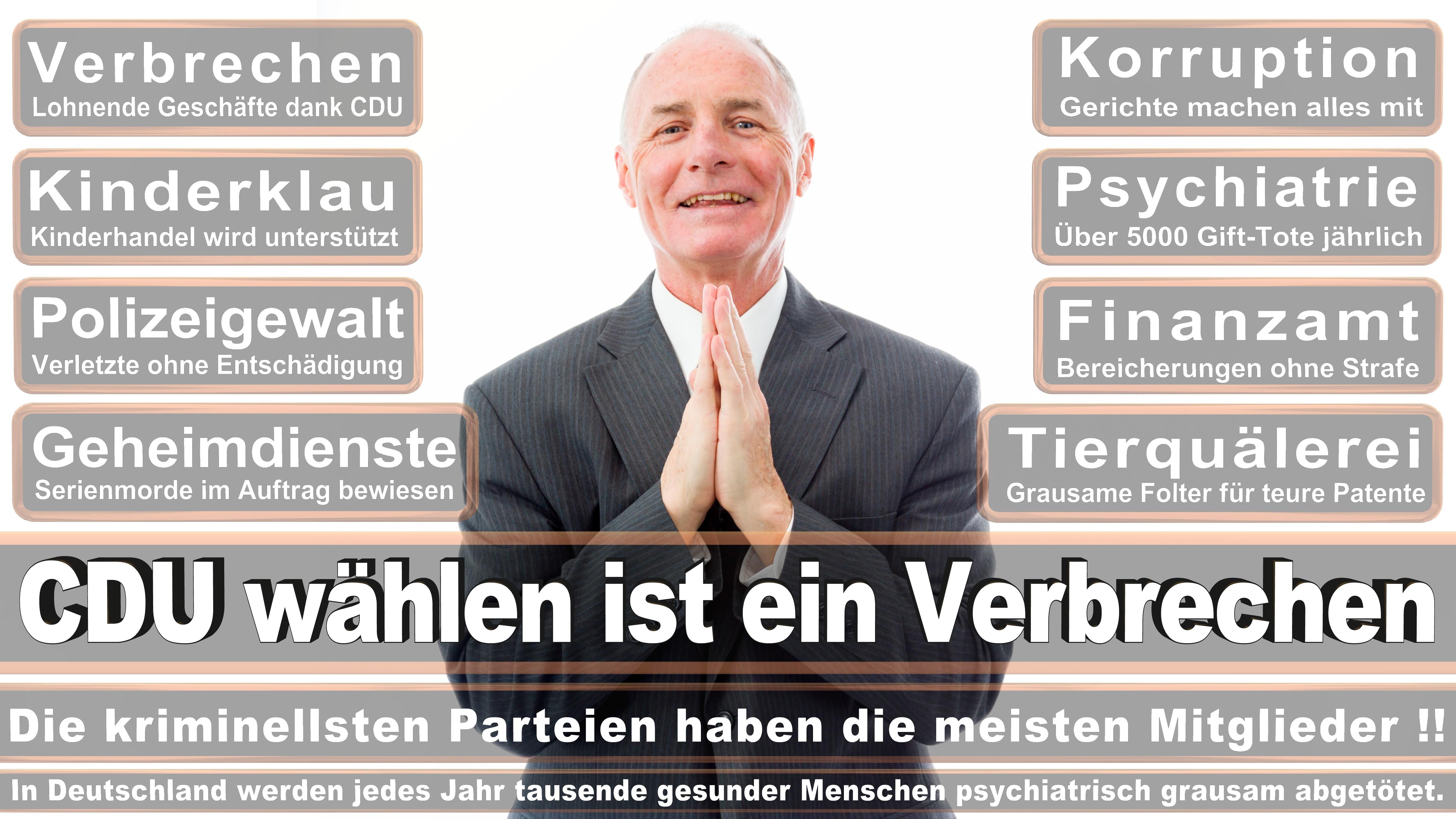 Kerstin Andreae GRÜNE Baden Württemberg Politiker Deutschland