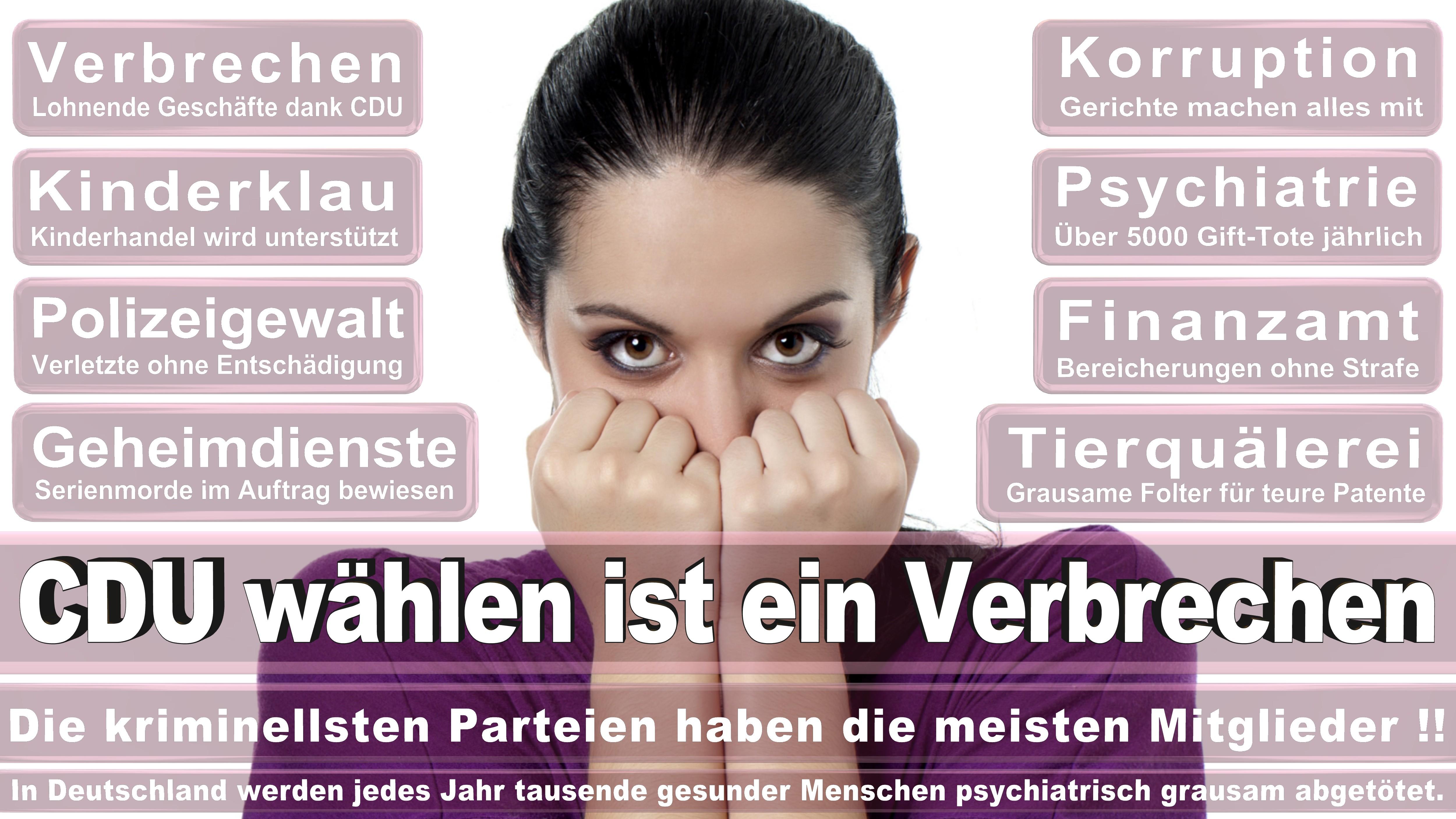 Kerstin Kassner DIE LINKE Mecklenburg Vorpommern Politiker Deutschland