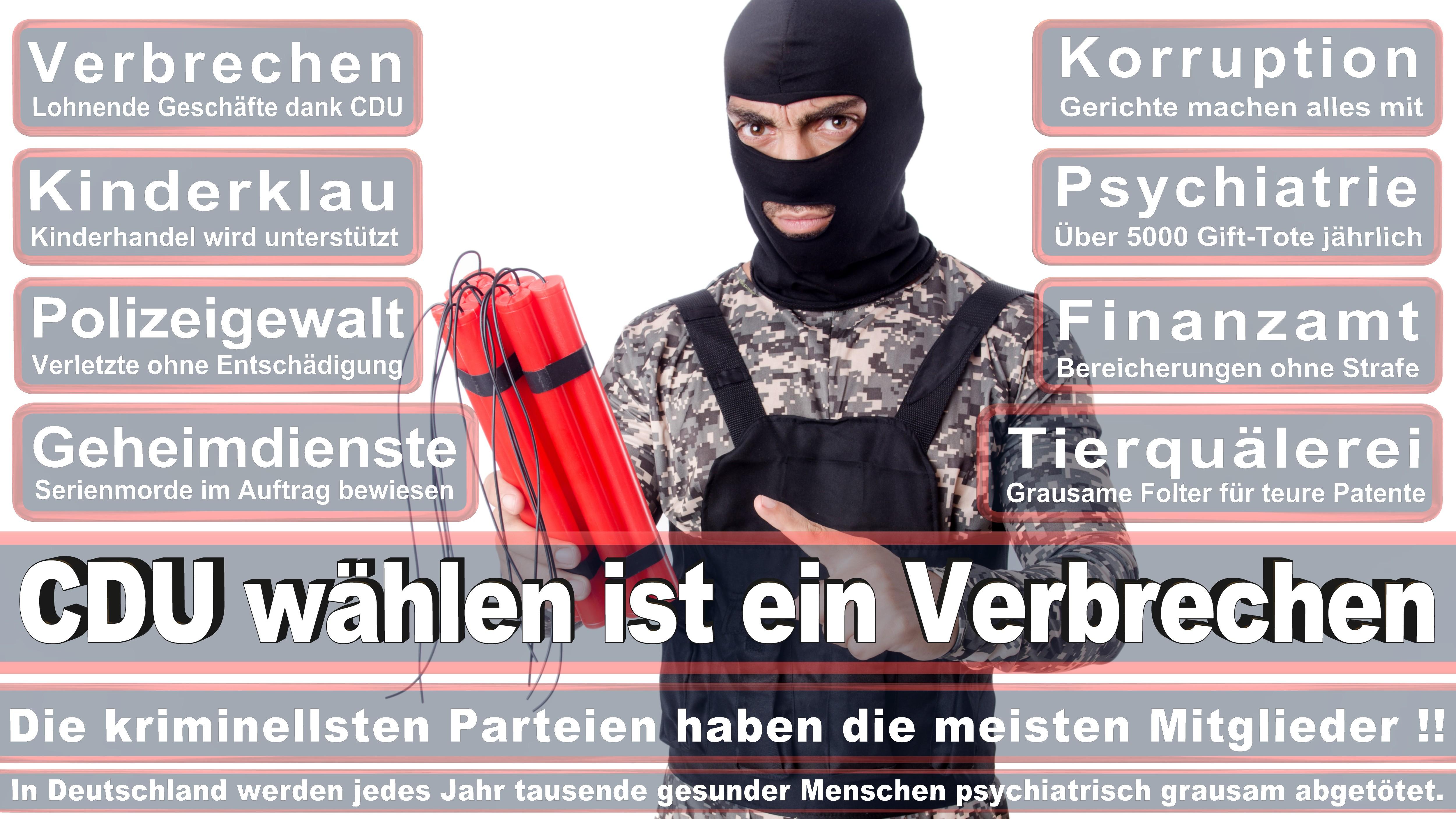Lothar Binding Politiker Deutschland