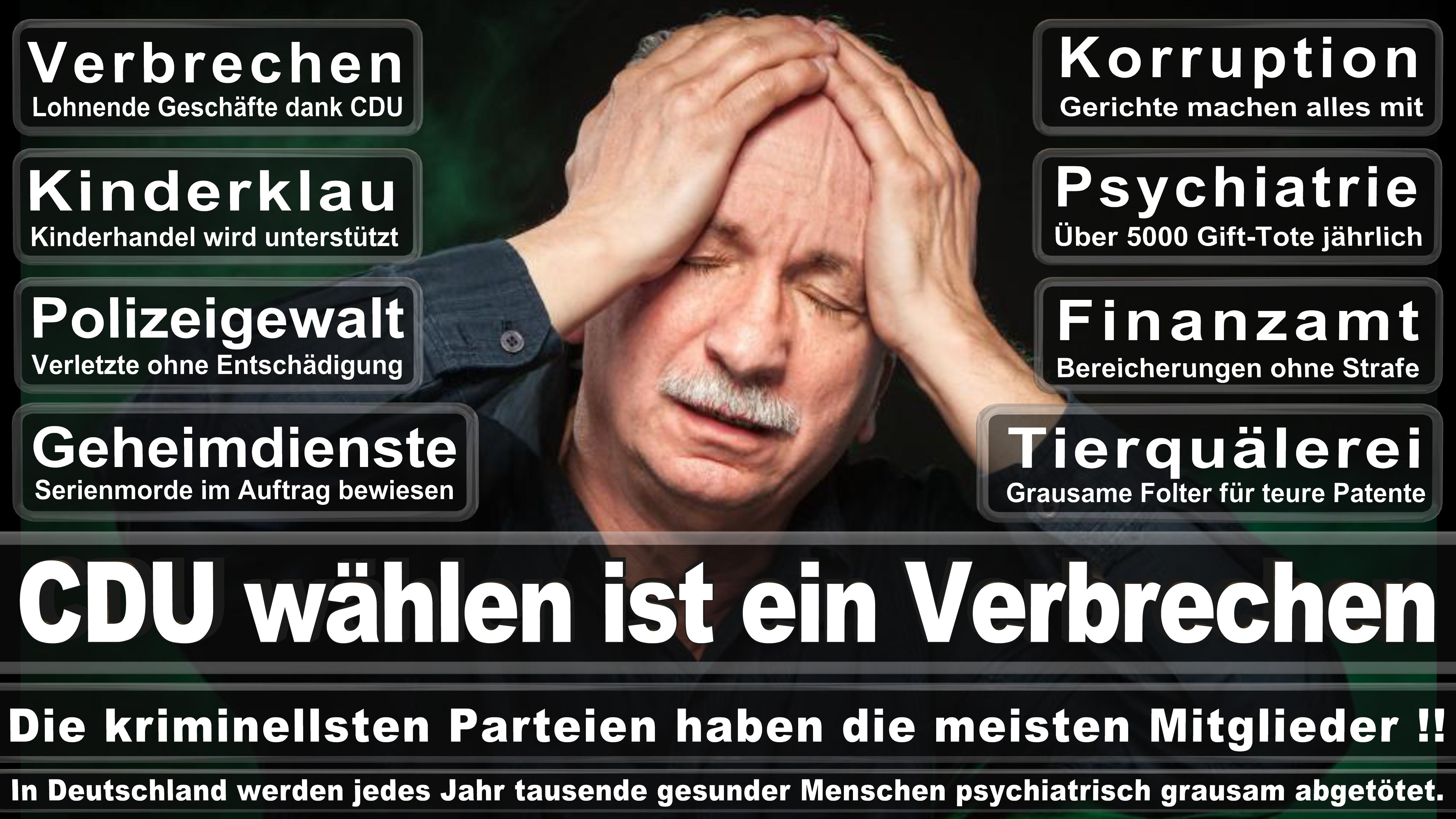 Maik Beermann CDU CSU Politiker