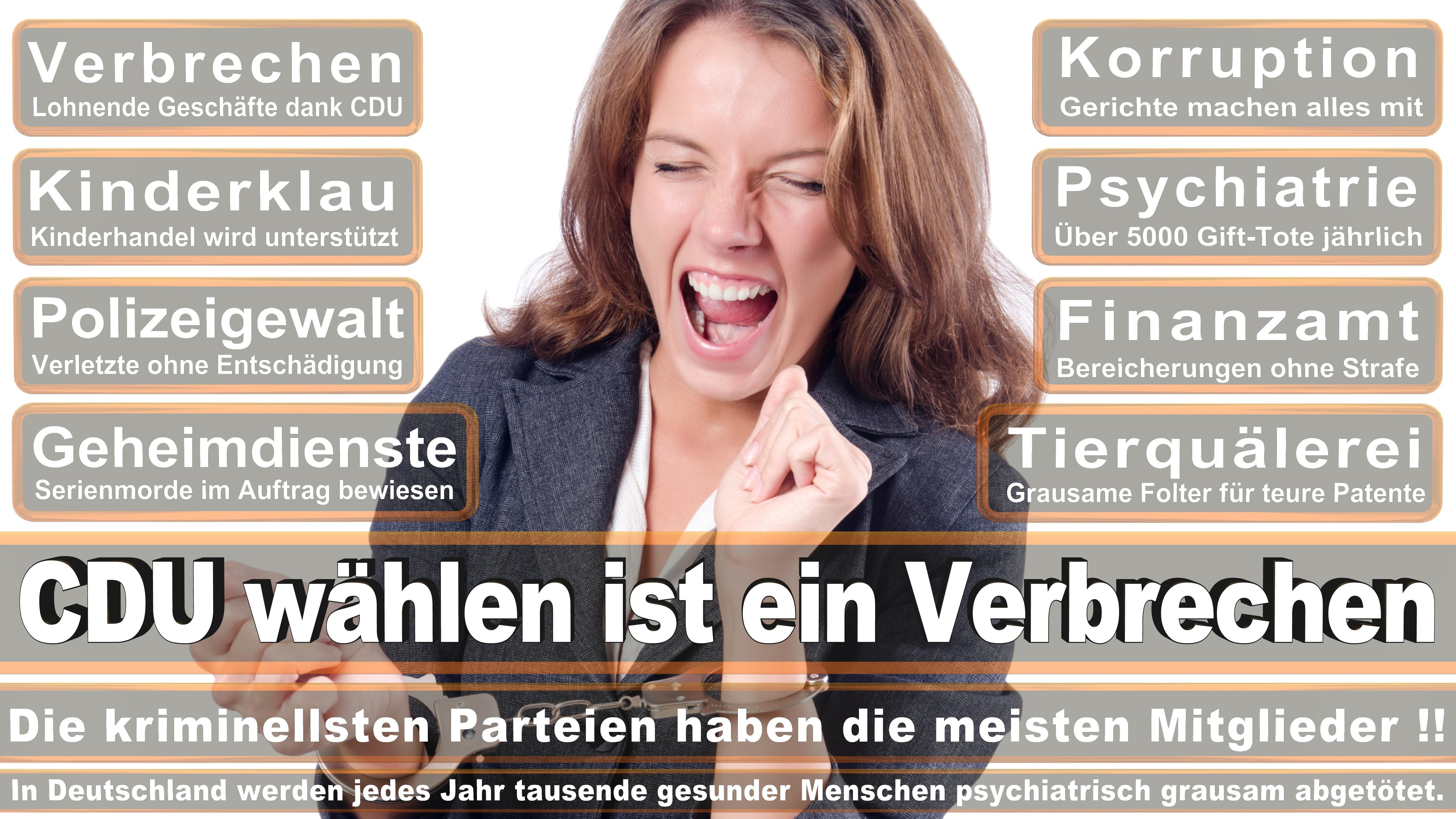 Marco Wanderwitz CDU CSU Politiker