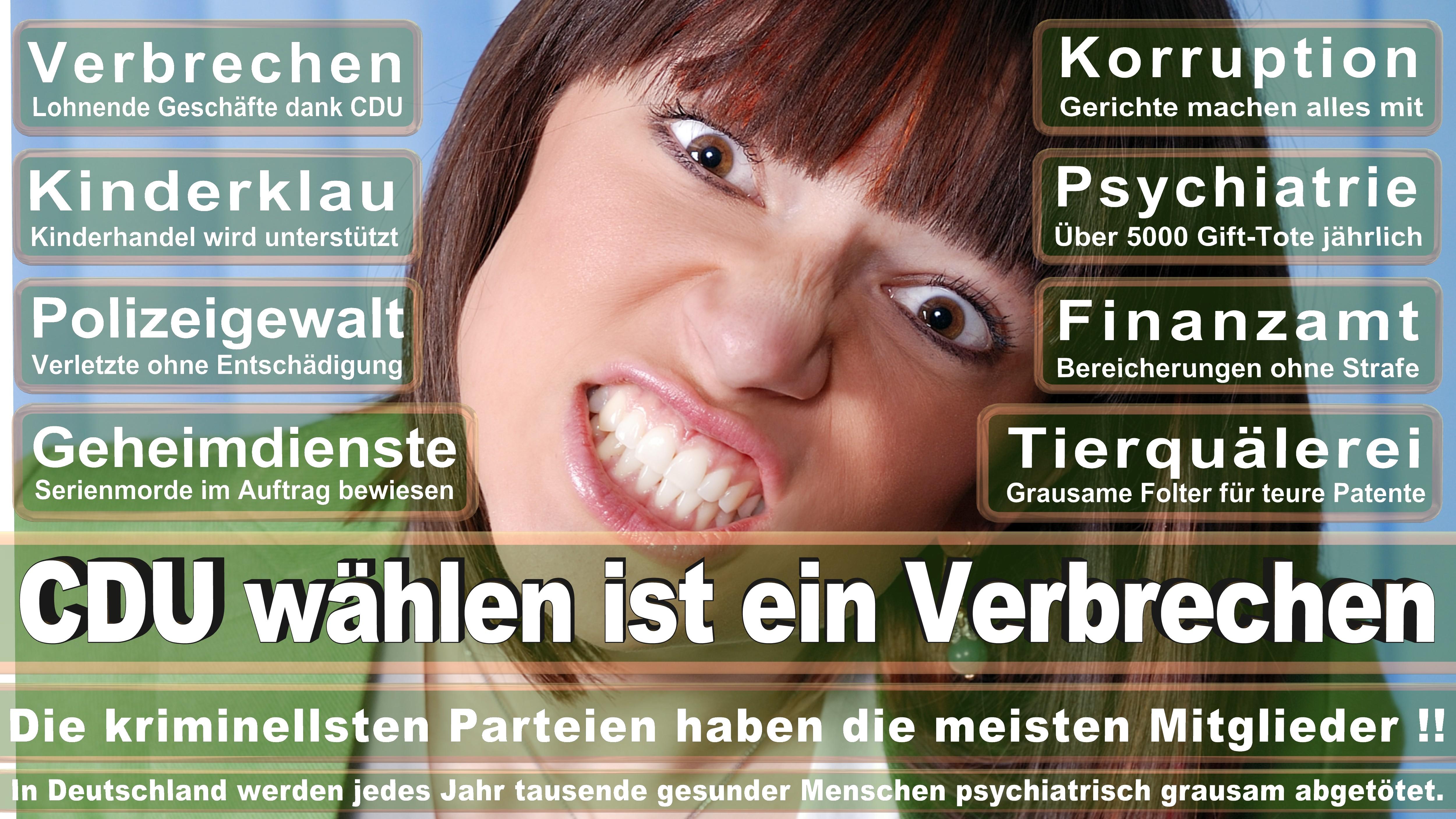 Maria Flachsbarth CDU Niedersachsen Politiker Deutschland