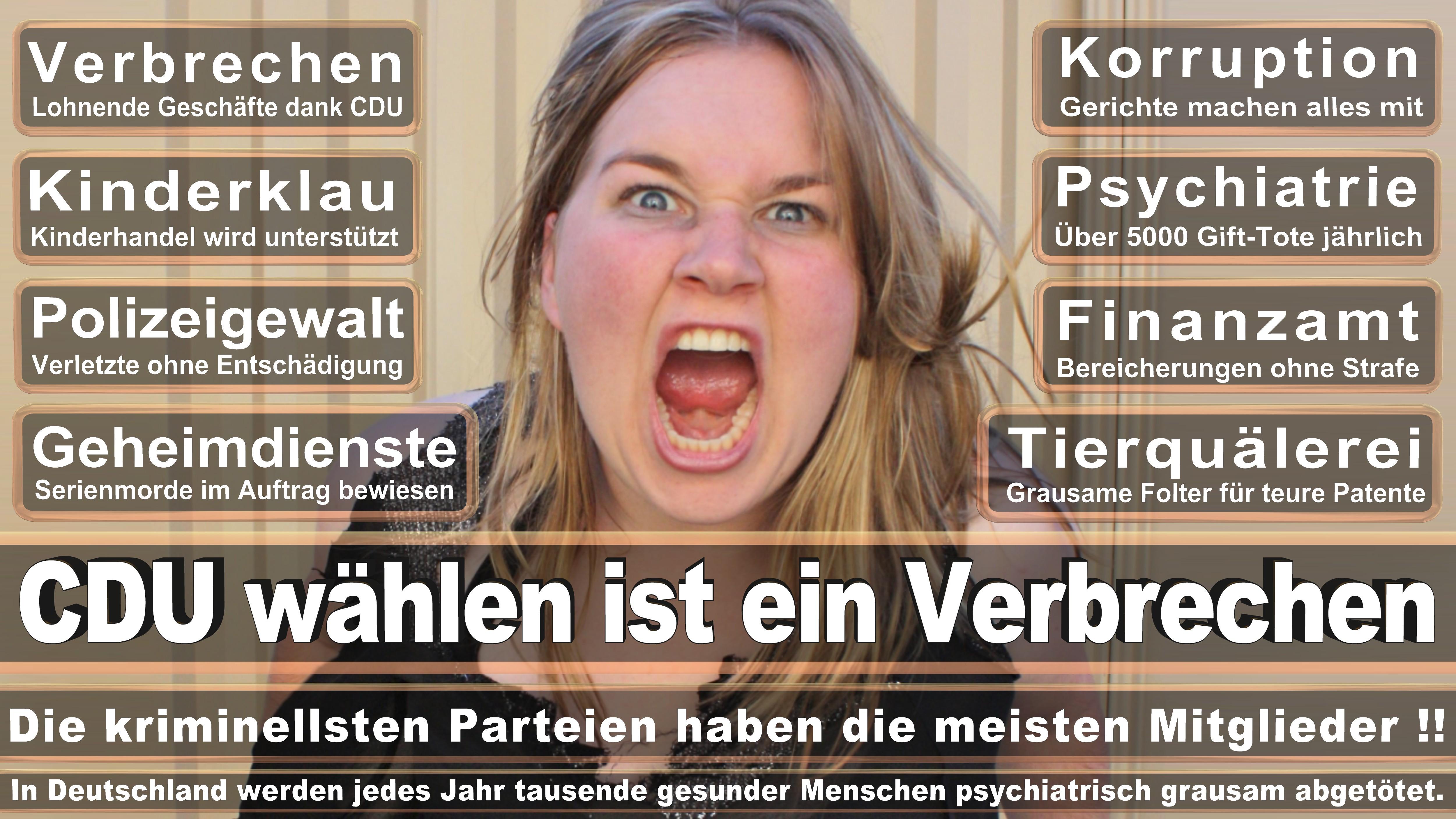 Marieluise Beck Politiker Deutschland