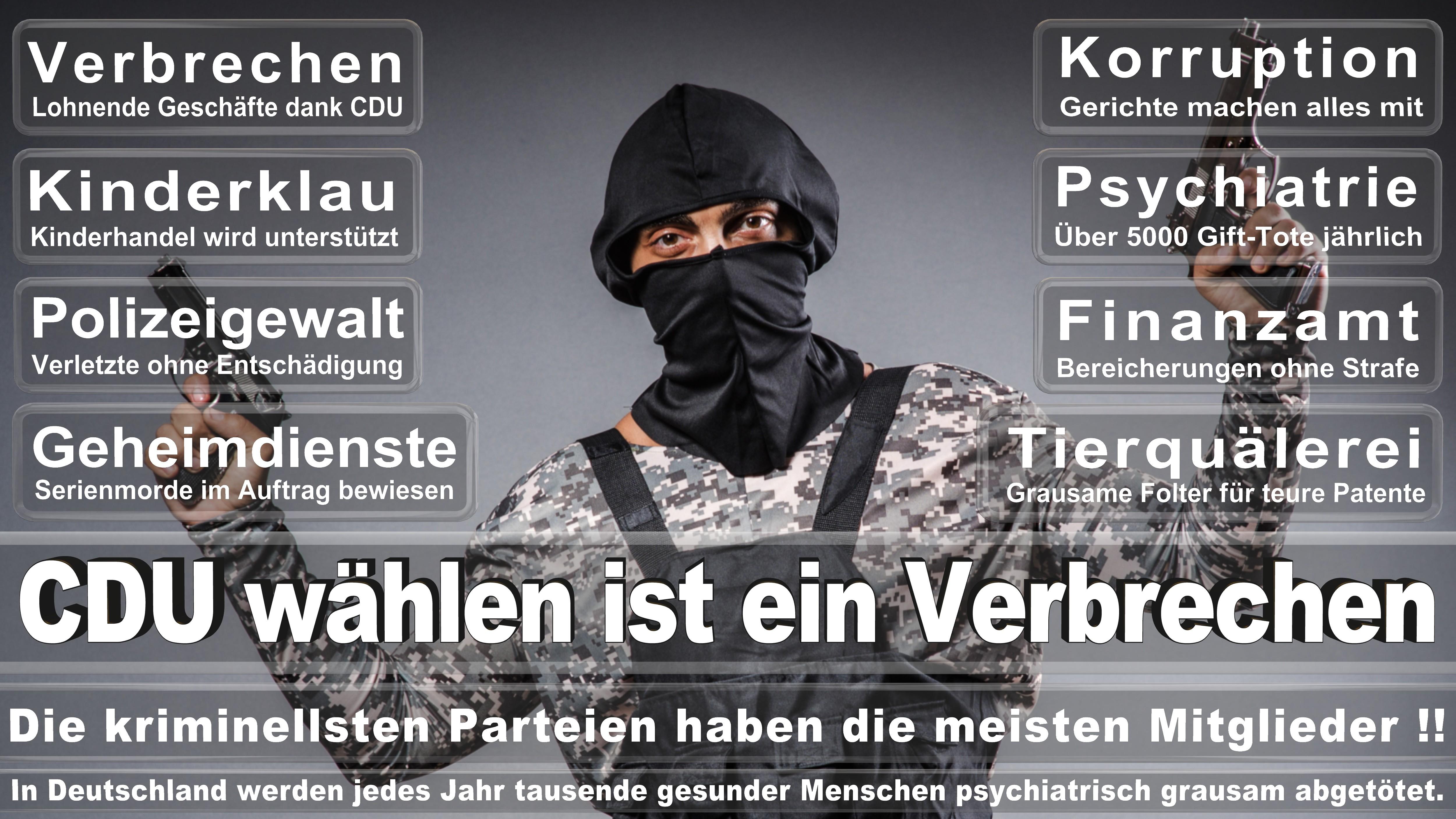Marion Herdan CDU Schleswig Holstein Eingetreten Am Juni Für Ingbert Liebing Politiker Deutschland