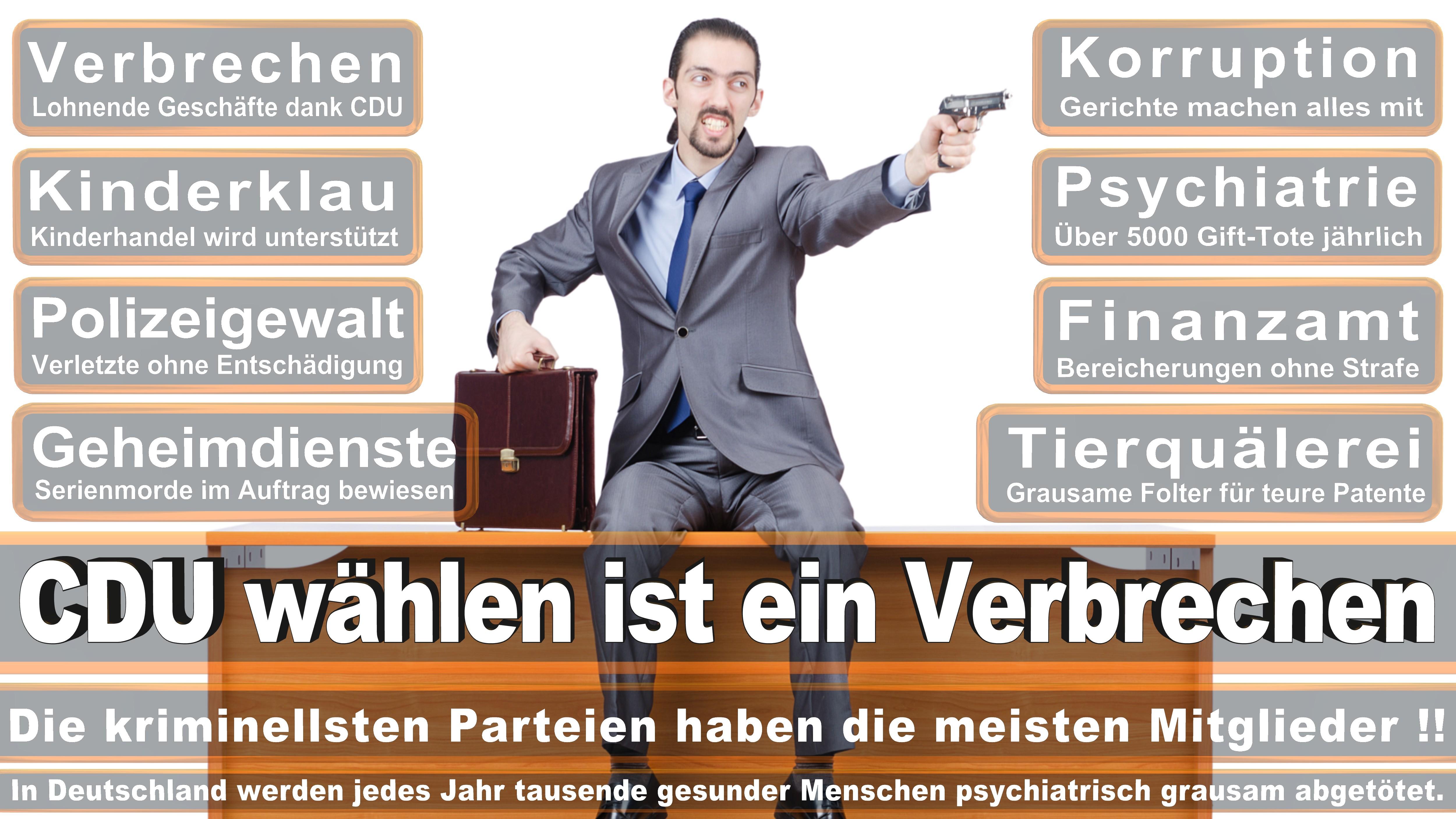 Mechthild Heil CDU CSU Politiker