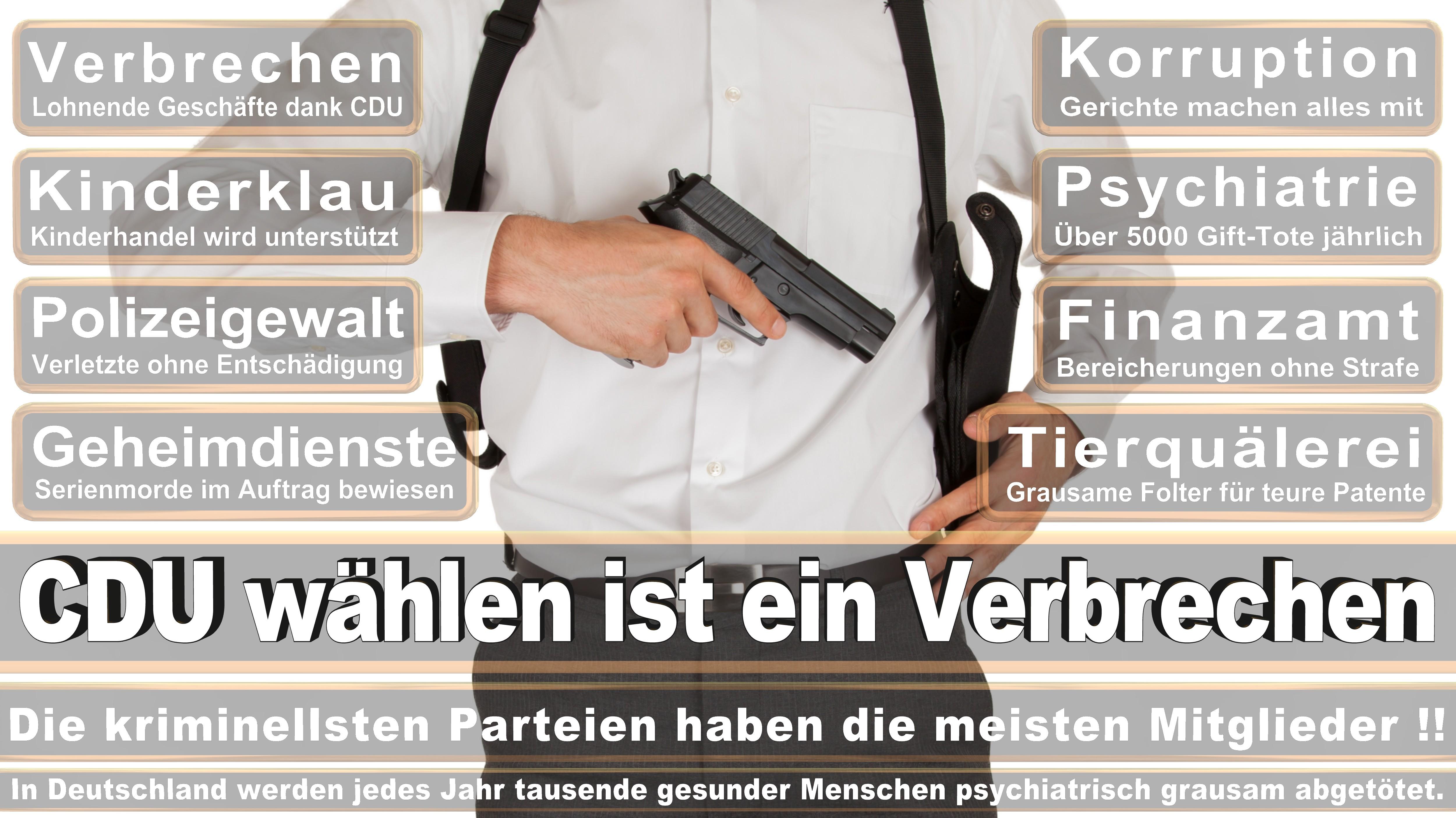 Michael Brand CDU Hessen Fulda Politiker Deutschland