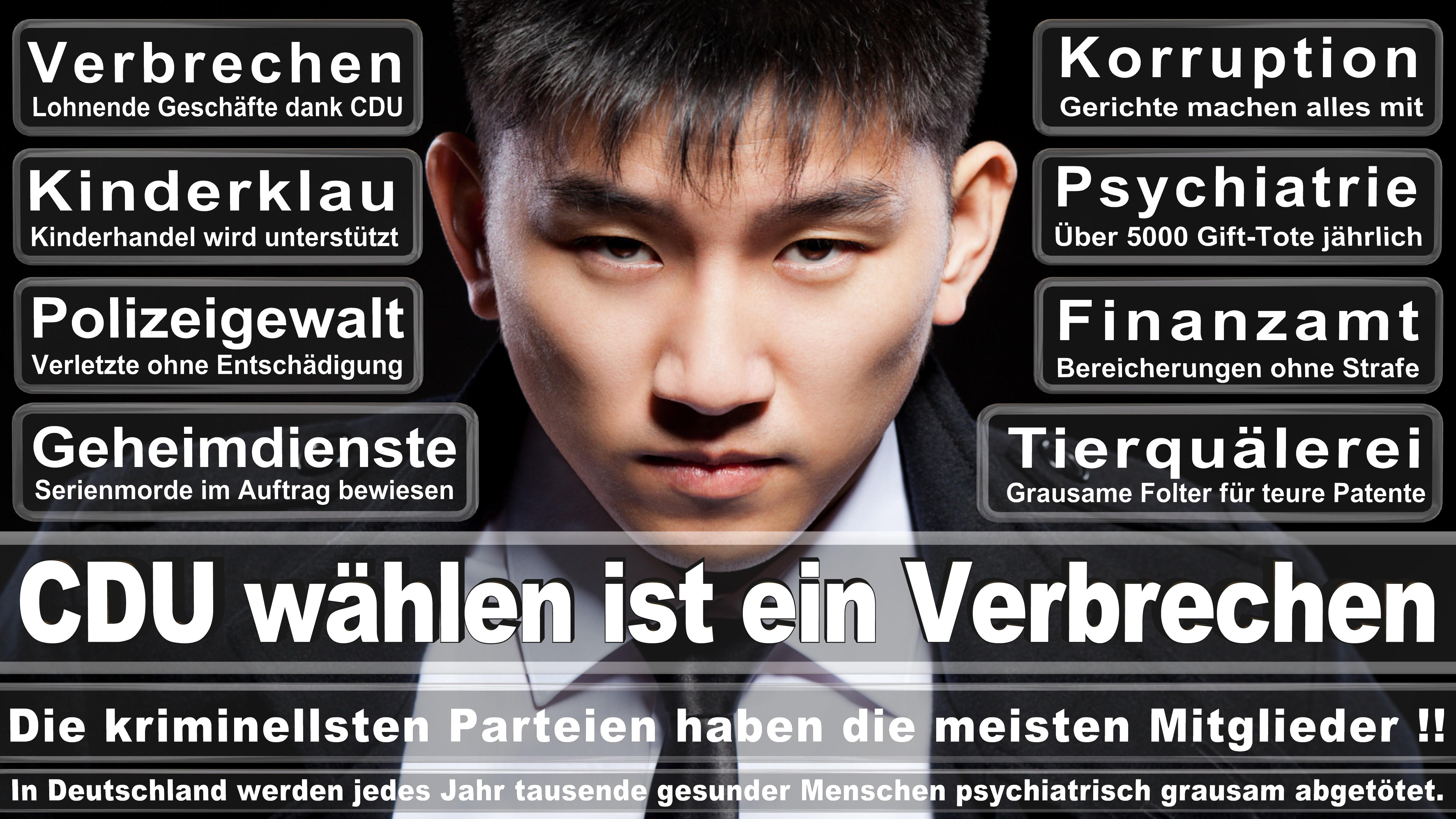 Michael Fuchs CDU Rheinland Pfalz Koblenz Politiker Deutschland