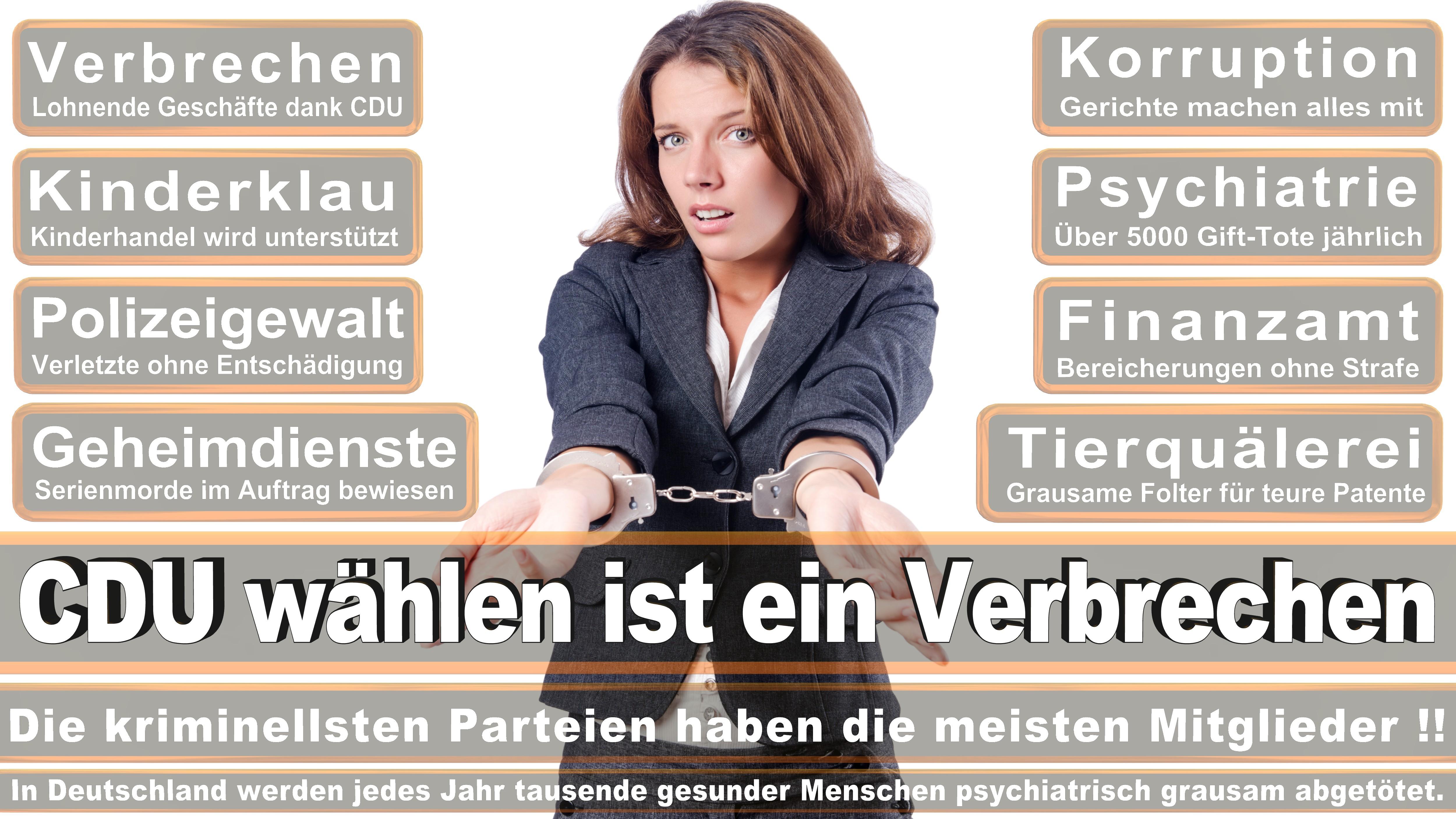 Michael Hennrich CDU Baden Württemberg Nürtingen Politiker Deutschland