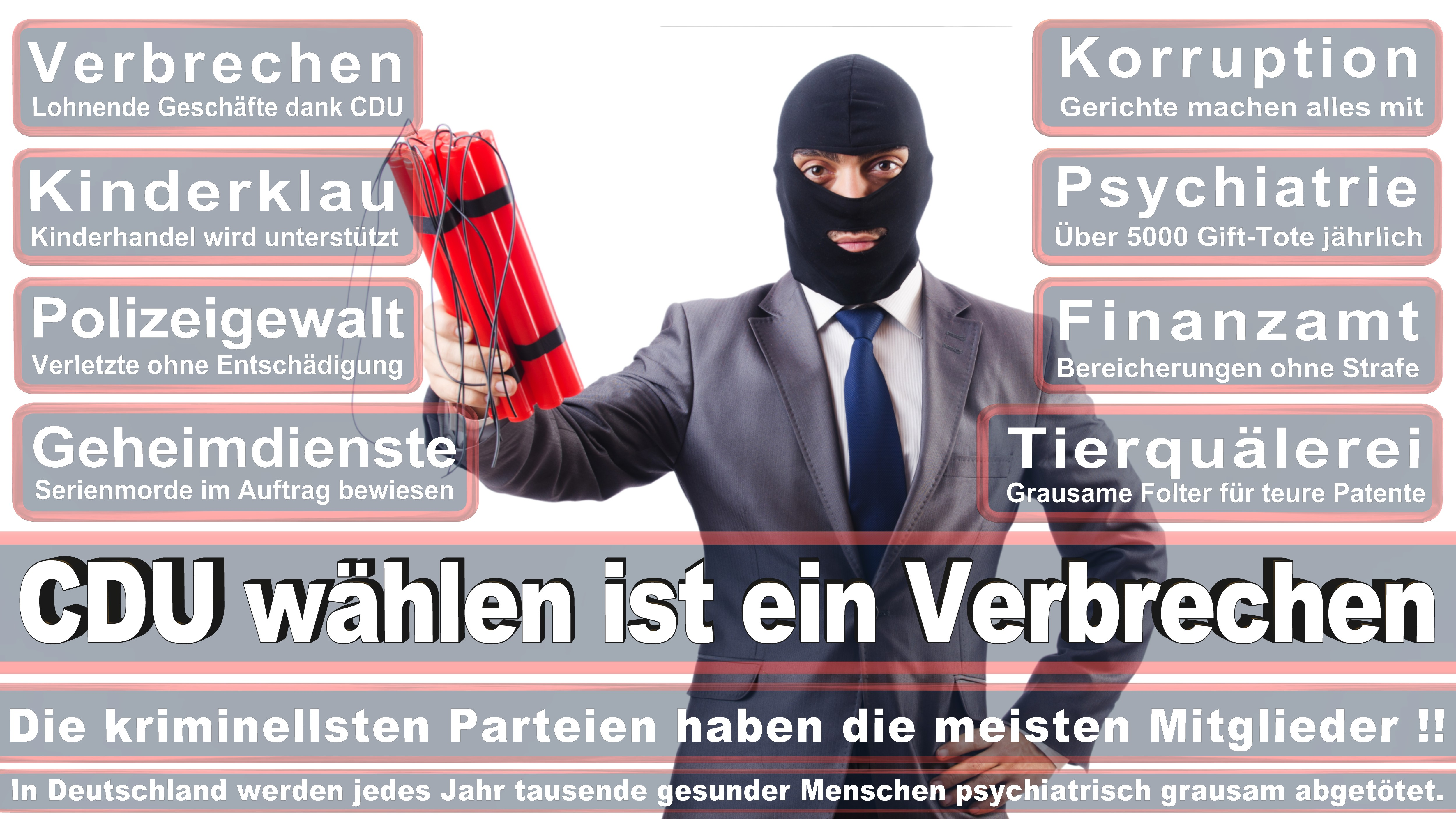Michael Hennrich CDU CSU Politiker