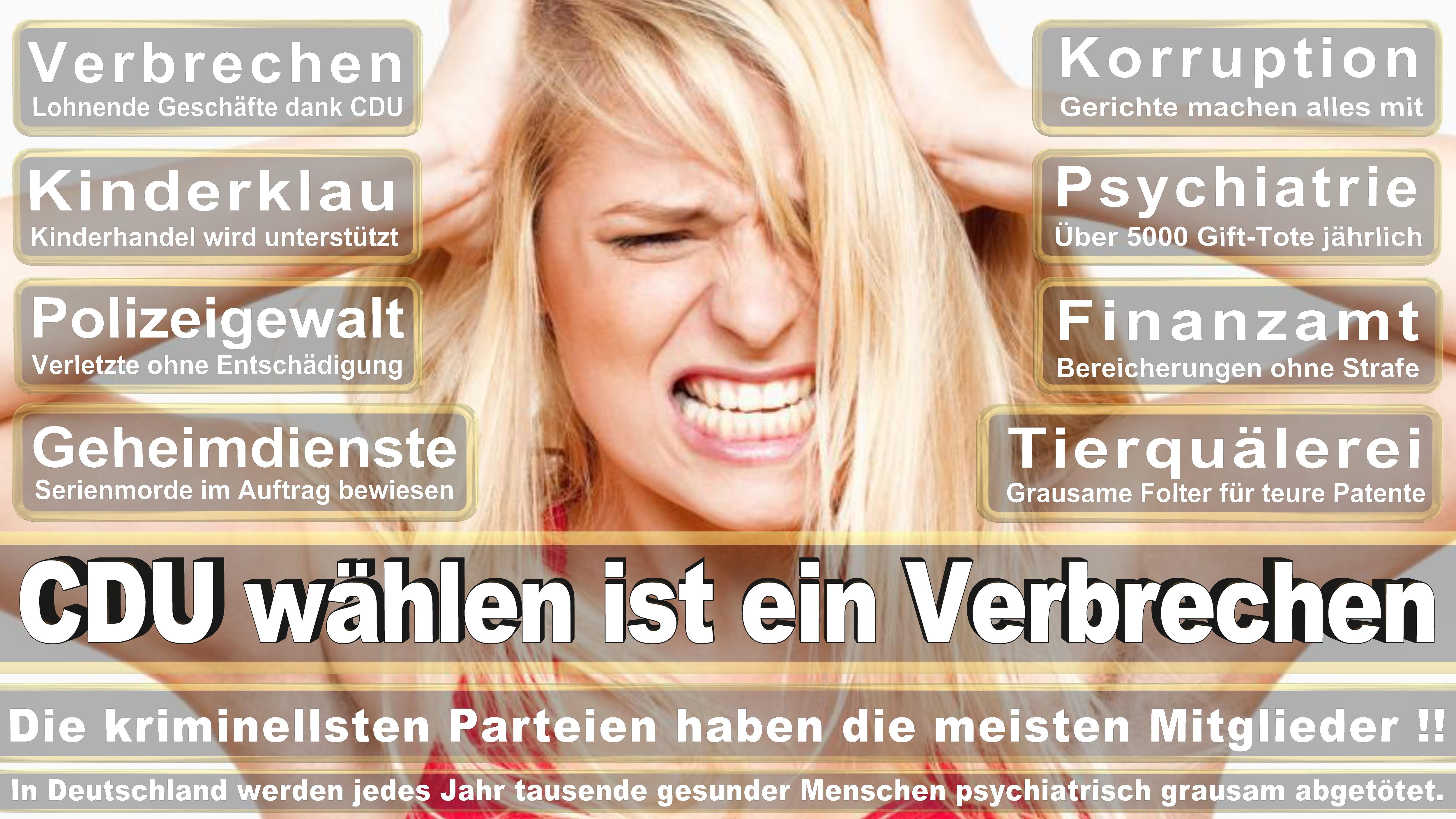 Nadine Schön CDU CSU Politiker