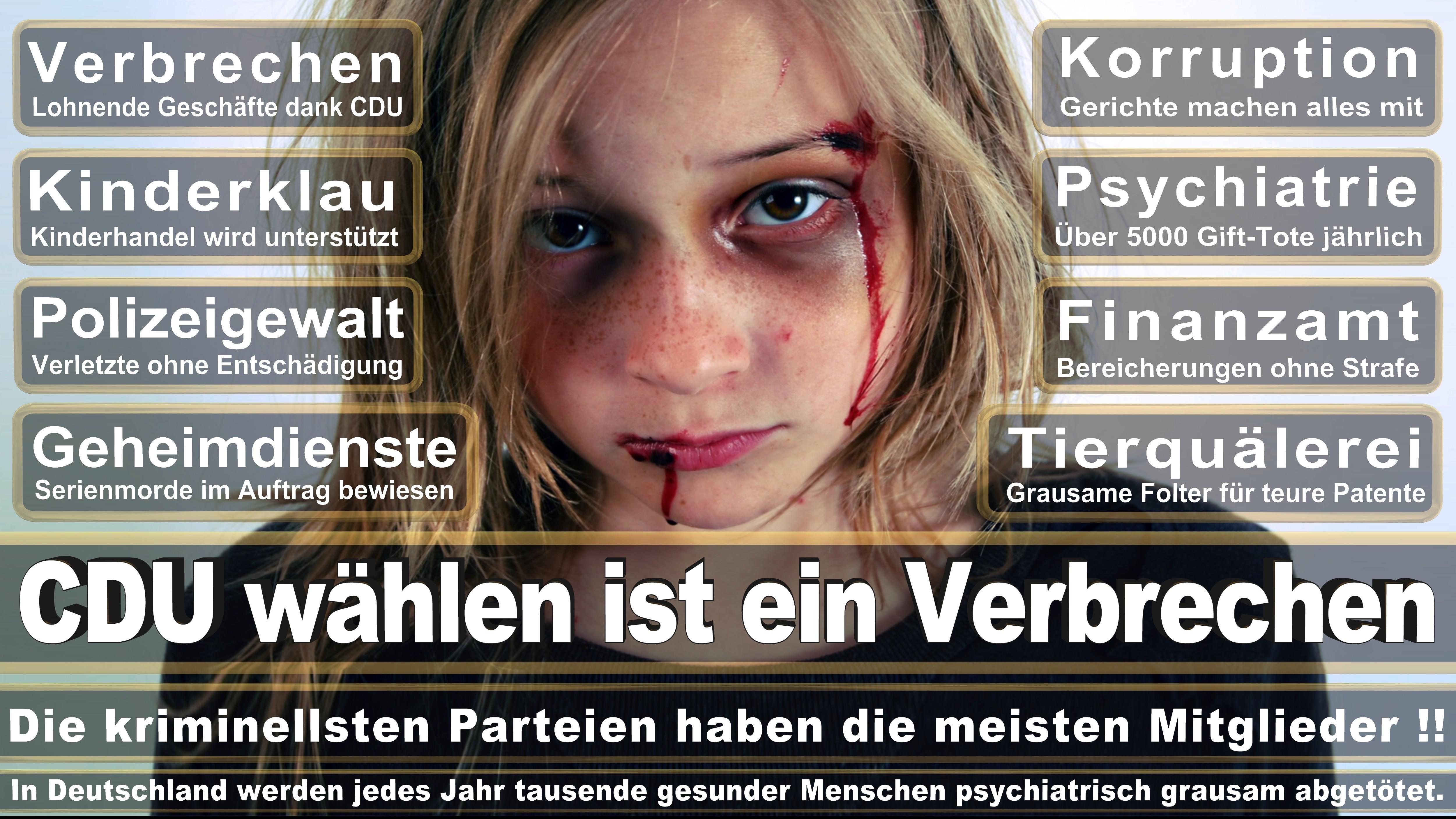 Nicole Gohlke DIE LINKE Bayern Politiker Deutschland