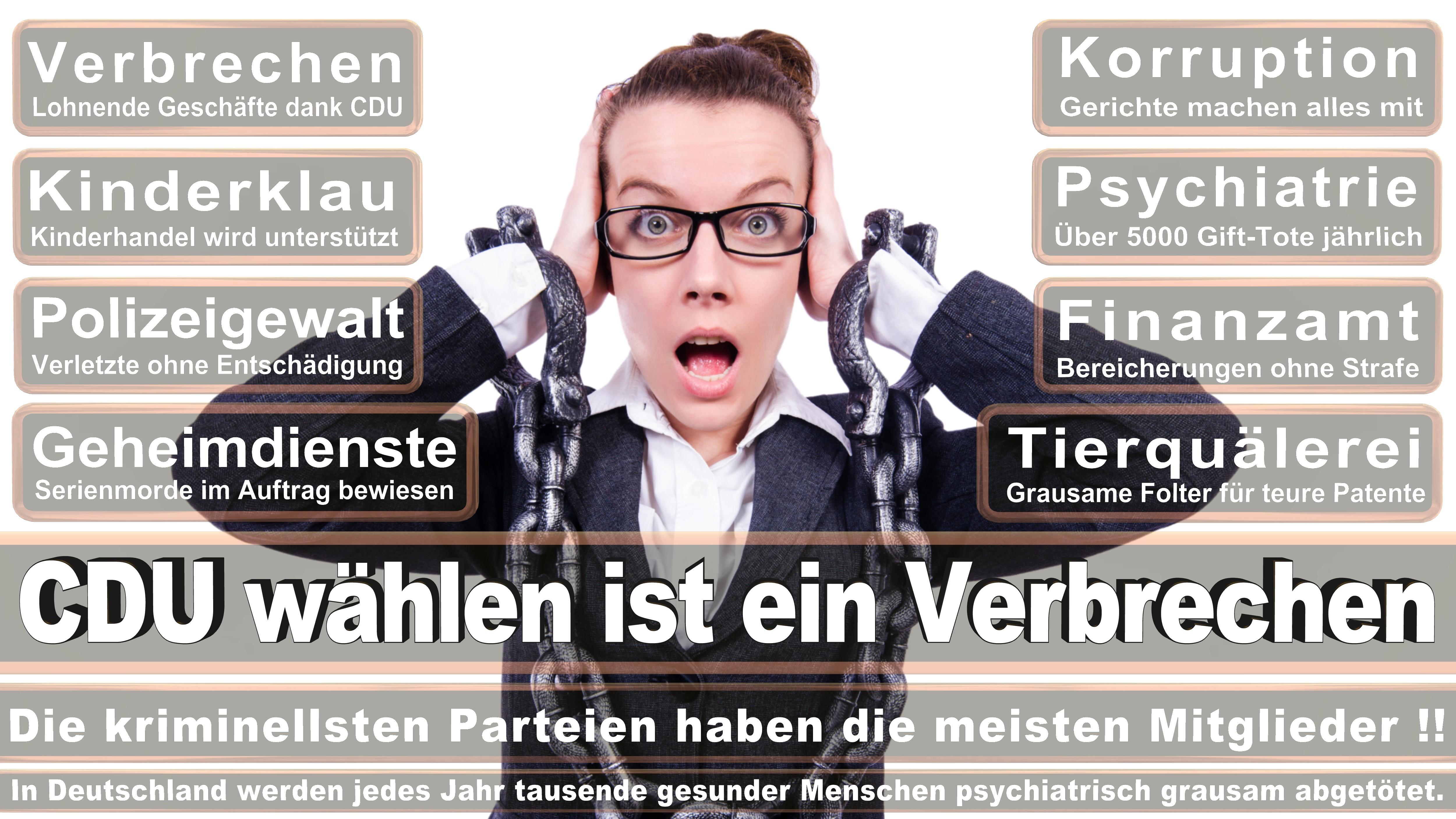 Norbert Barthle CDU CSU Politiker