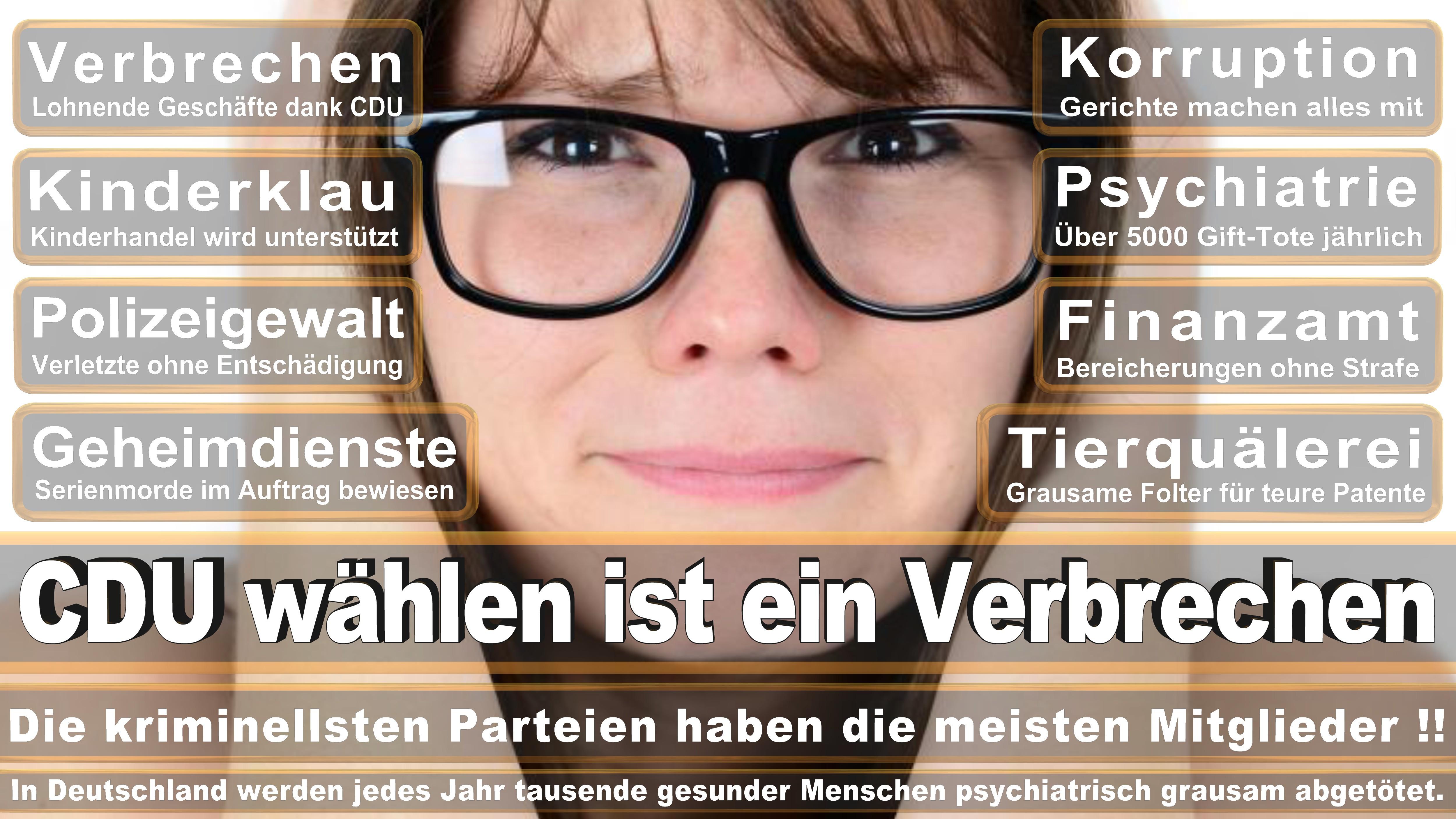 Oliver Grundmann Foto Laurence Chaperon CDU CSU Politiker