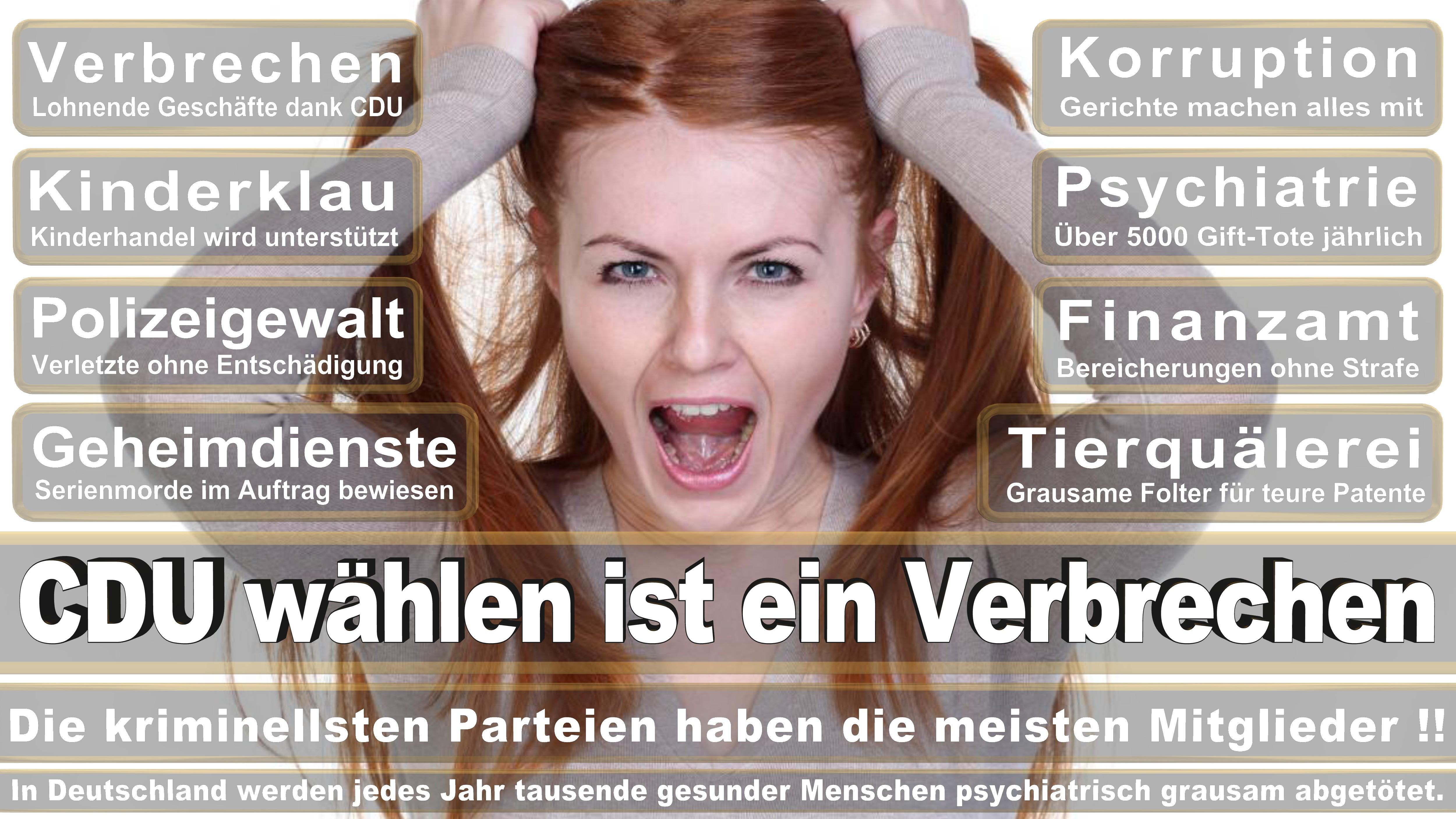 Patricia Lips CDU CSU Politiker