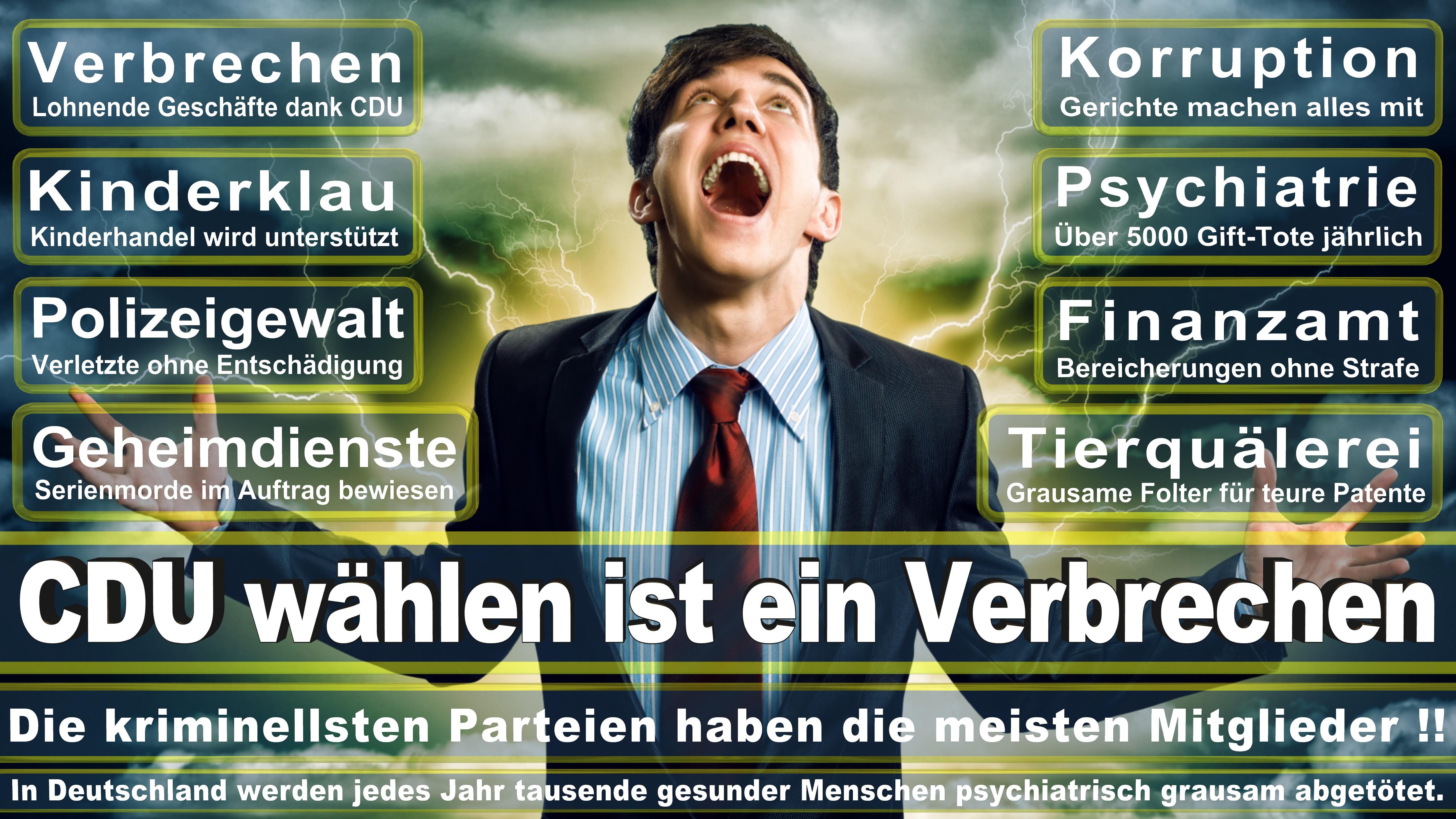 Patricia Lips CDU Hessen Odenwald Politiker Deutschland