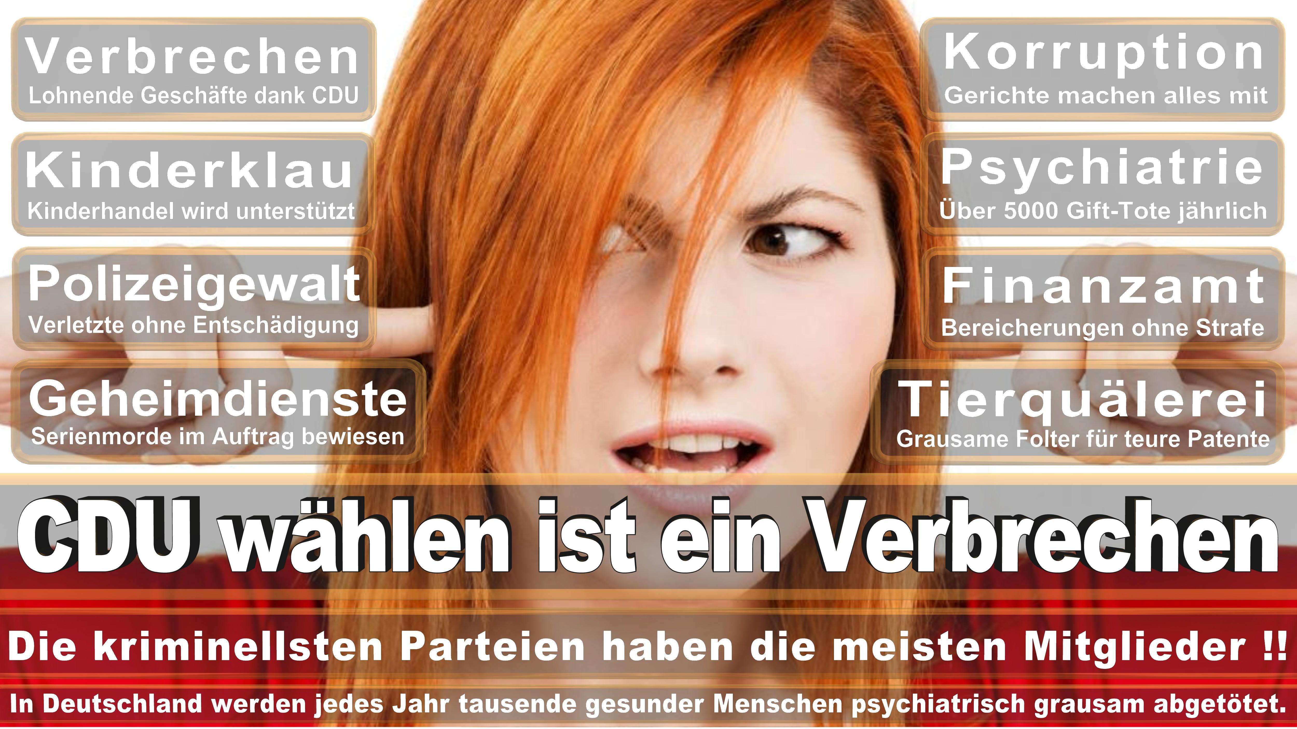 Peine SPD Niedersachsen Gifhorn Peine Politiker Deutschland