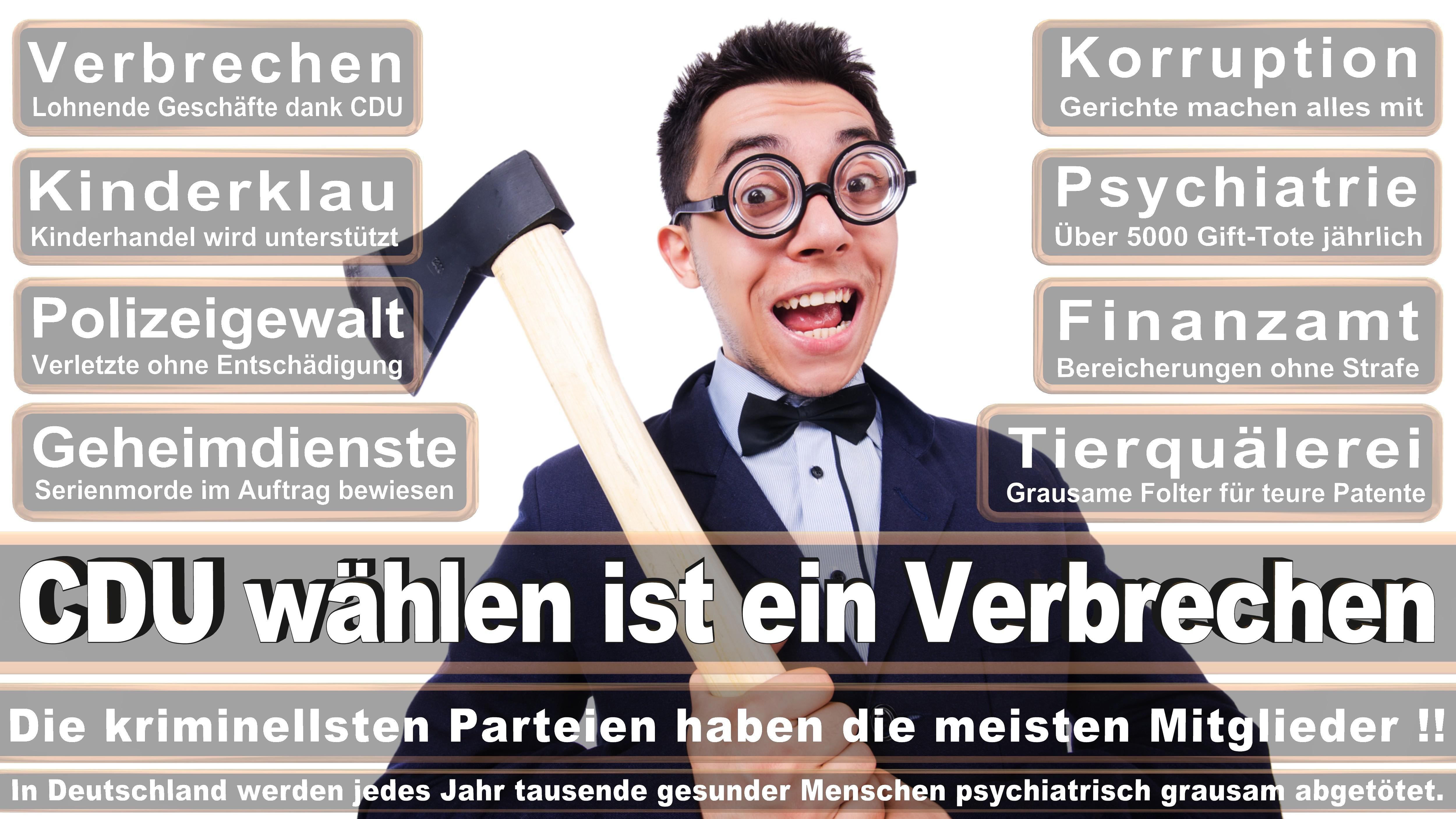 Peter Stein CDU CSU Politiker