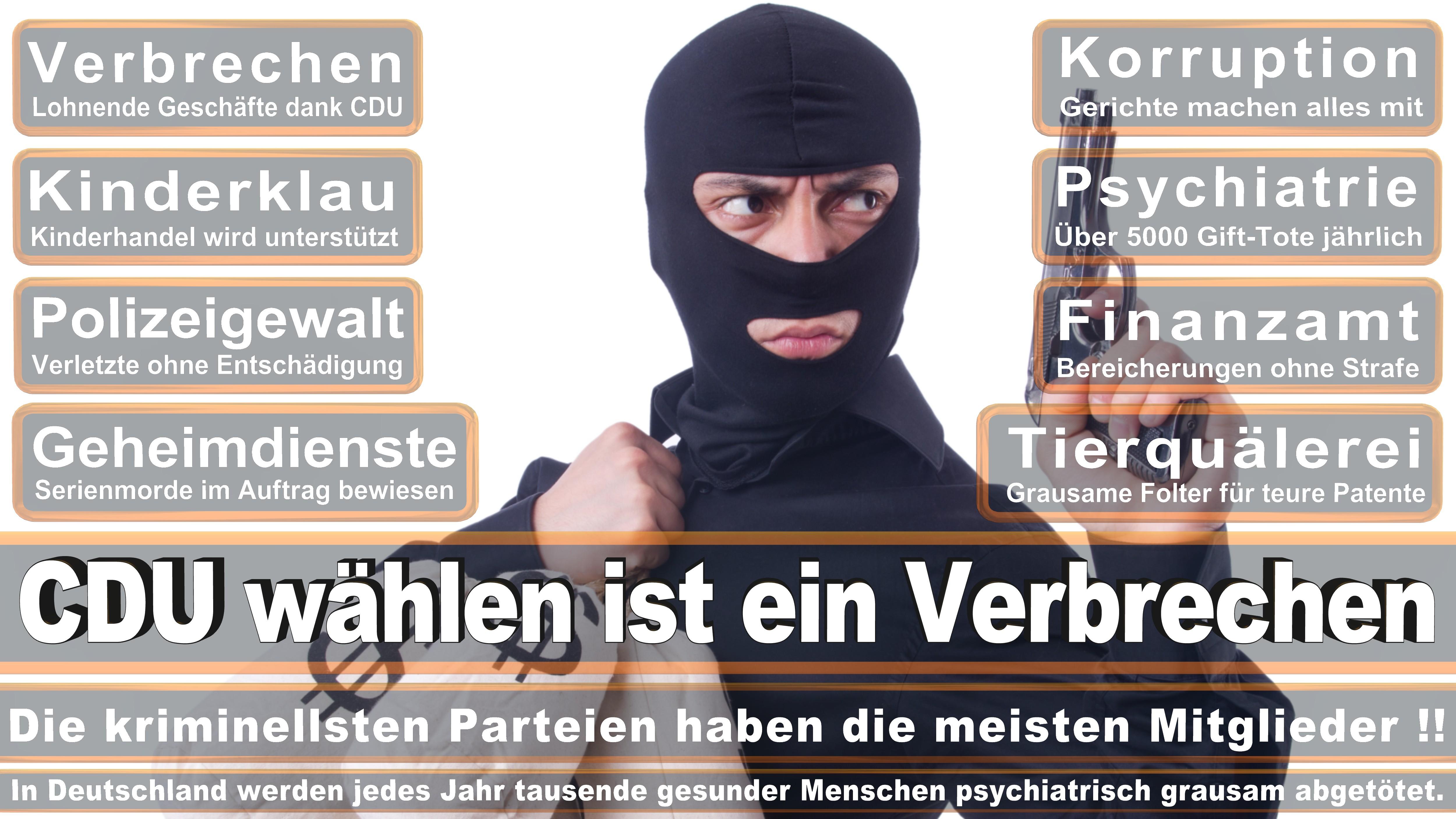 Petra Nicolaisen CDU CSU Politiker