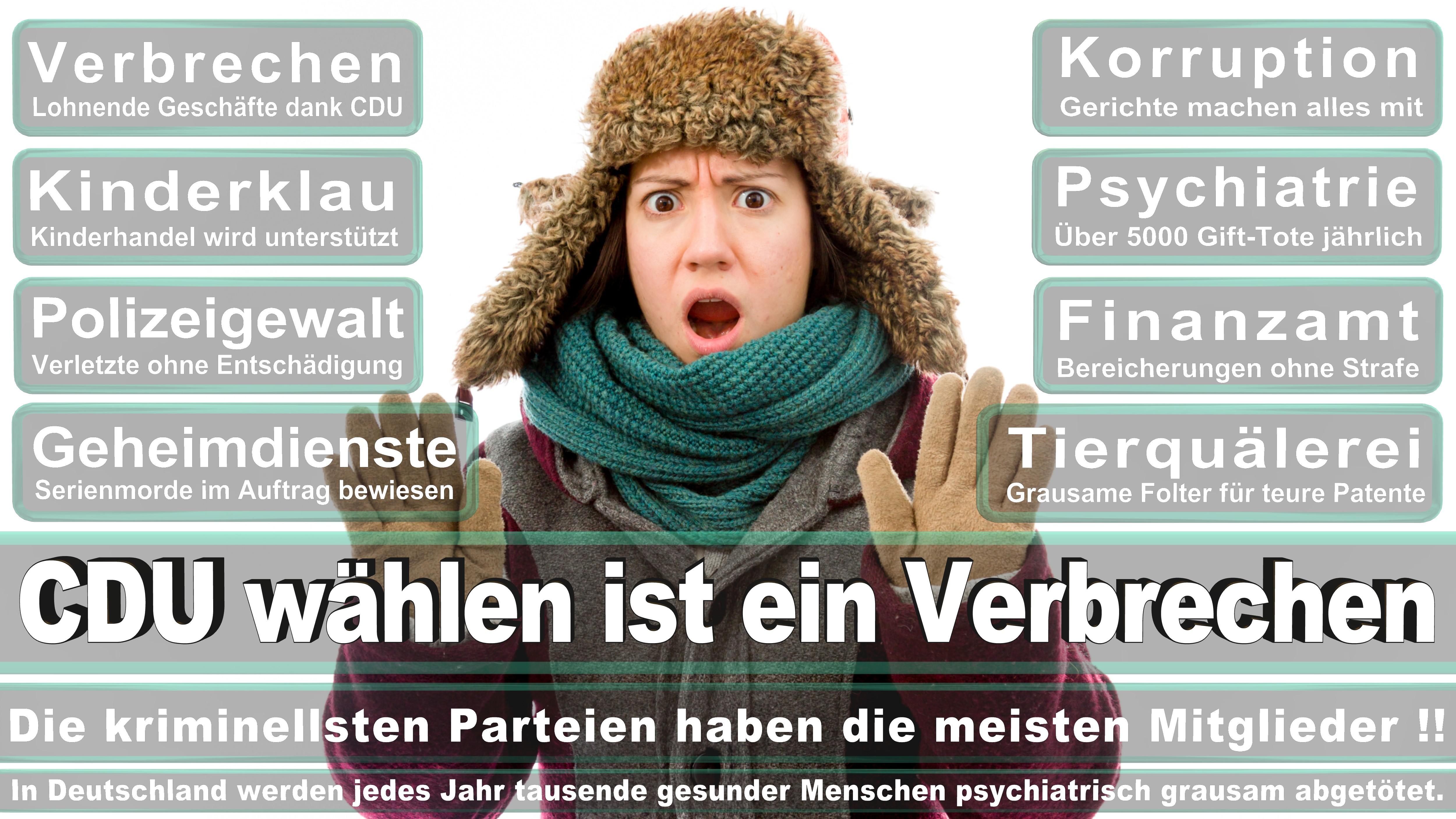 Priska Hinz Politiker Deutschland