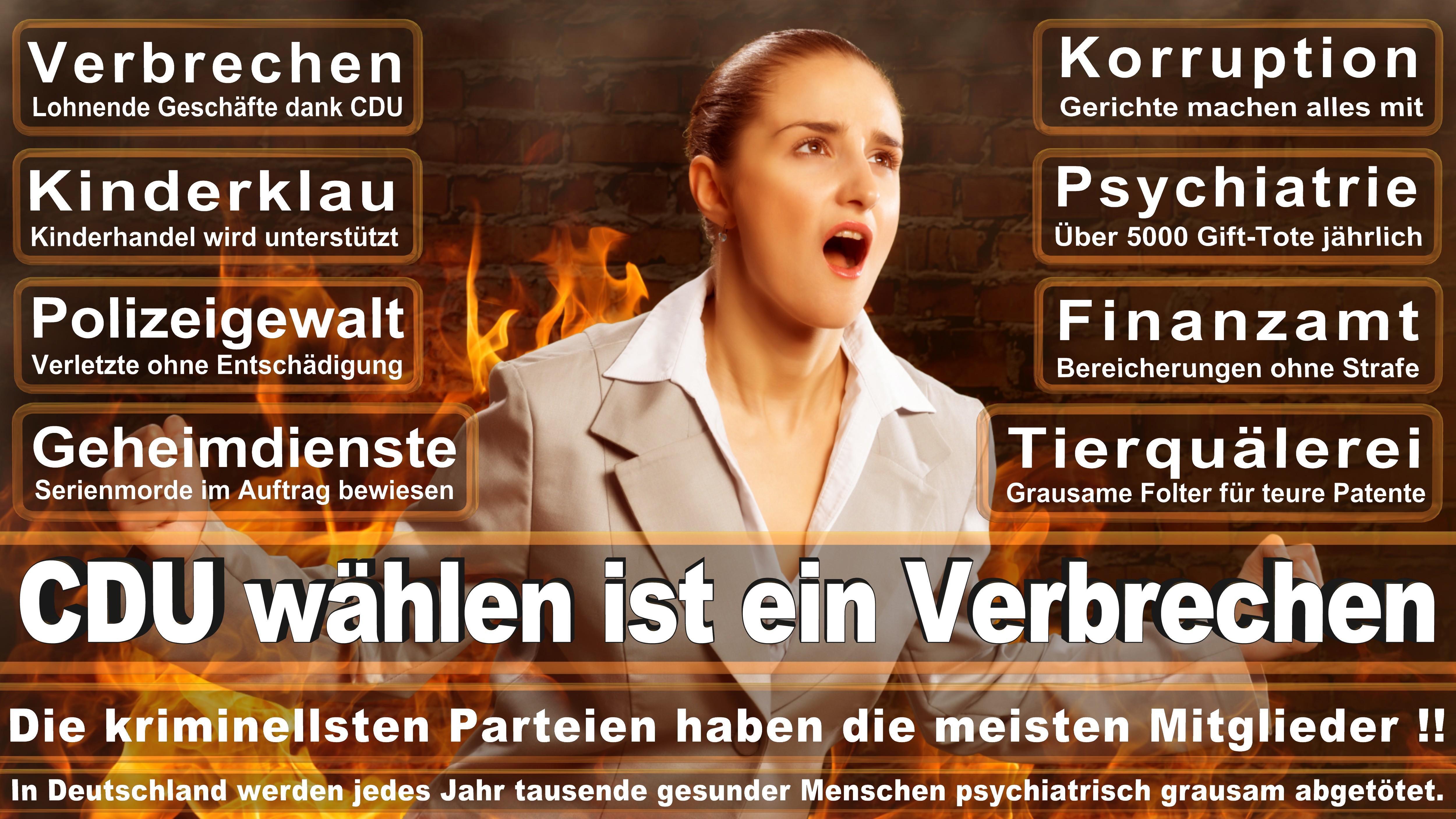 Prof Monika Grütters CDU CSU Politiker