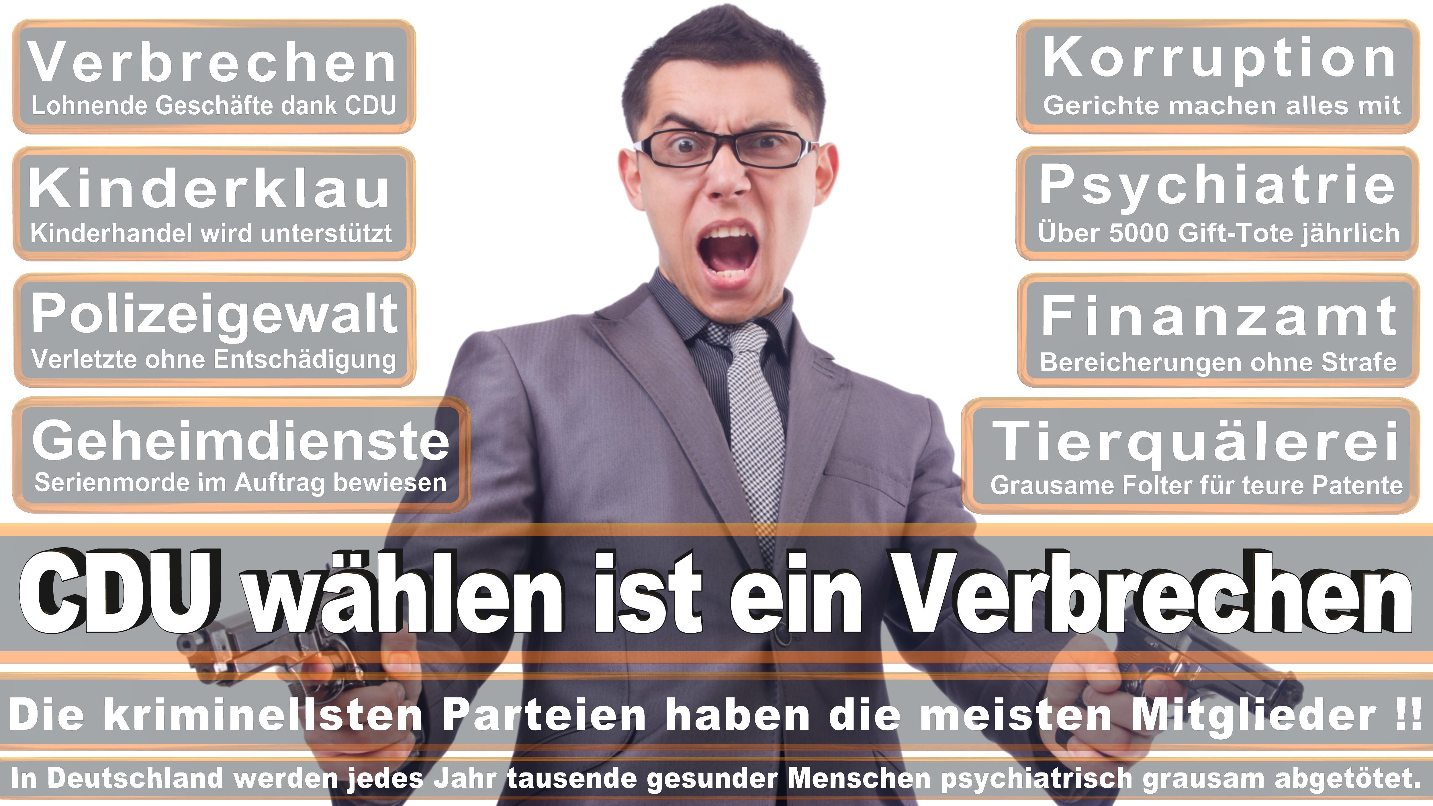 Prof H C Dr Karl A Lamers CDU CSU Politiker