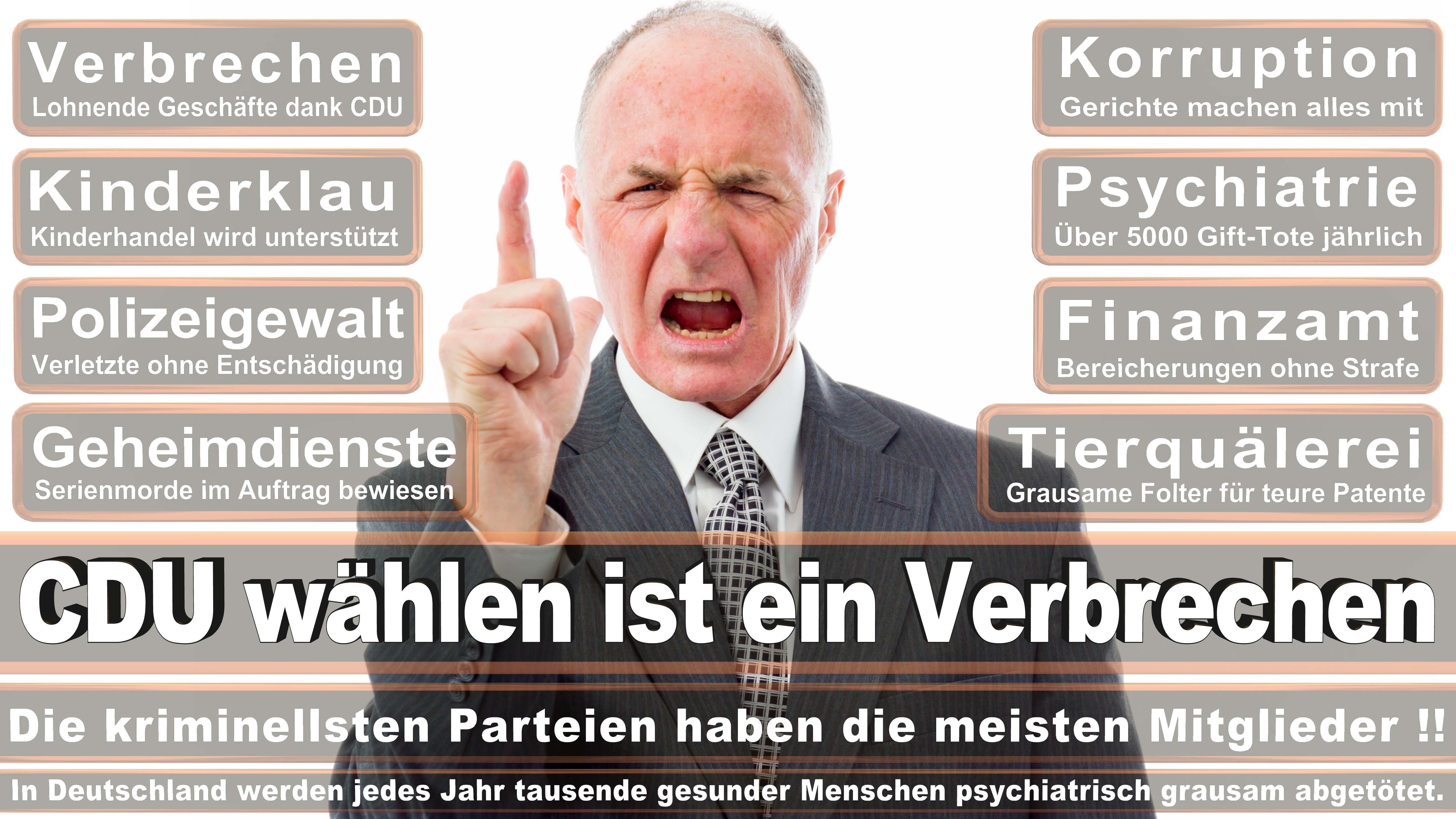 Rüdiger Kruse CDU CSU Politiker
