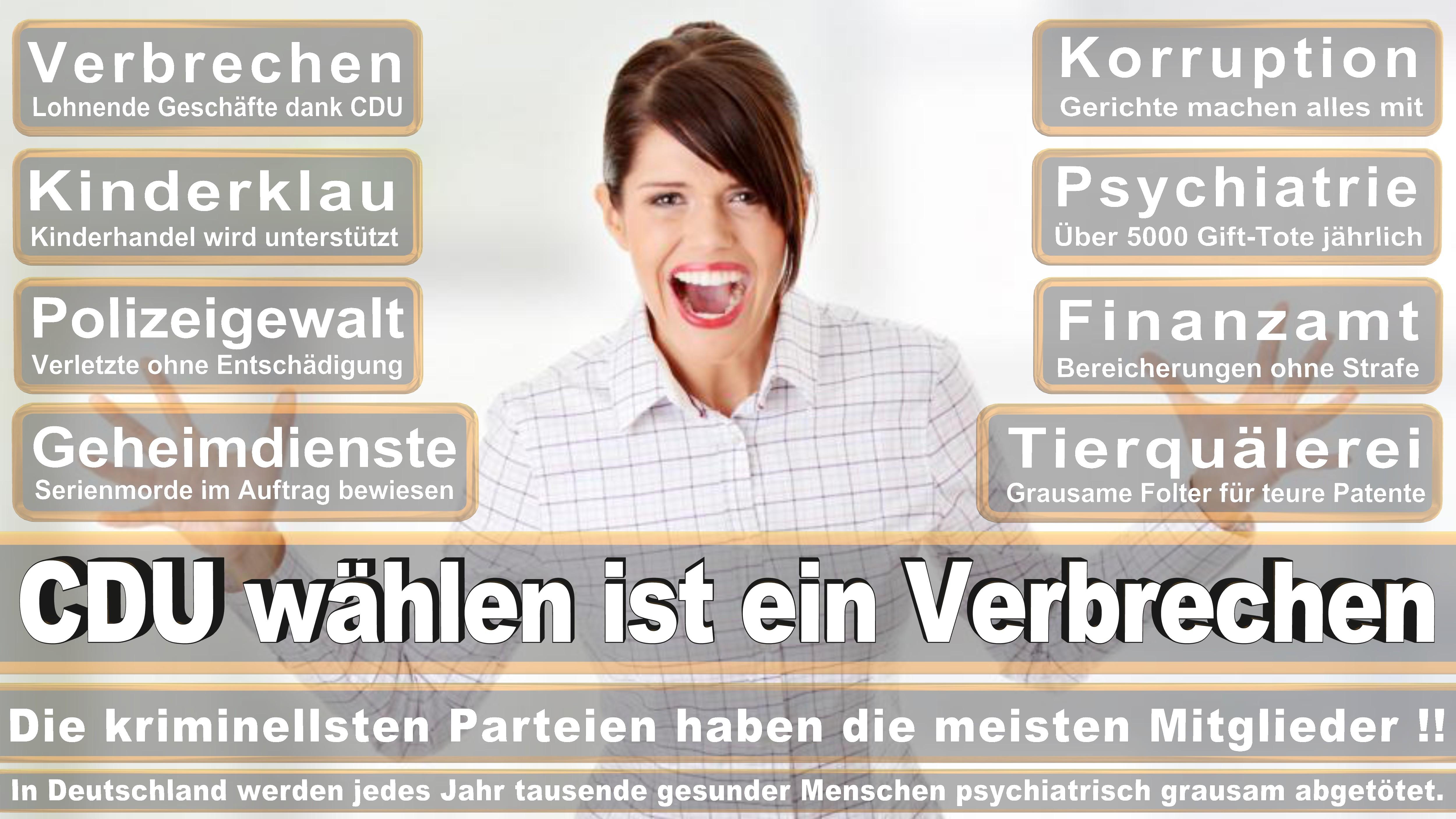 Rainer Hajek CDU Niedersachsen Eingetreten Am November Für Heiko Schmelzle Politiker Deutschland