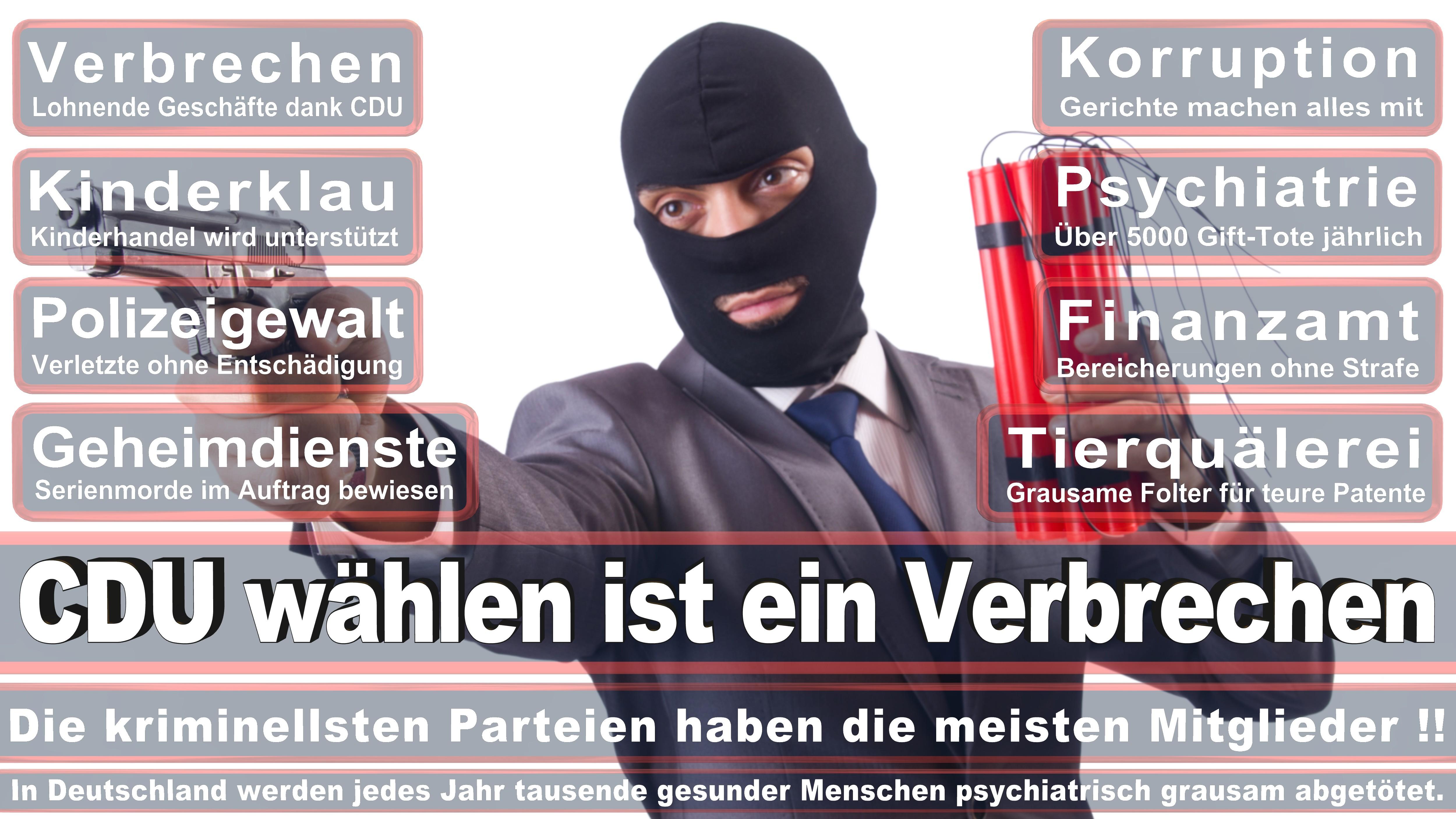 Robert Hochbaum CDU Sachsen Vogtlandkreis Politiker Deutschland