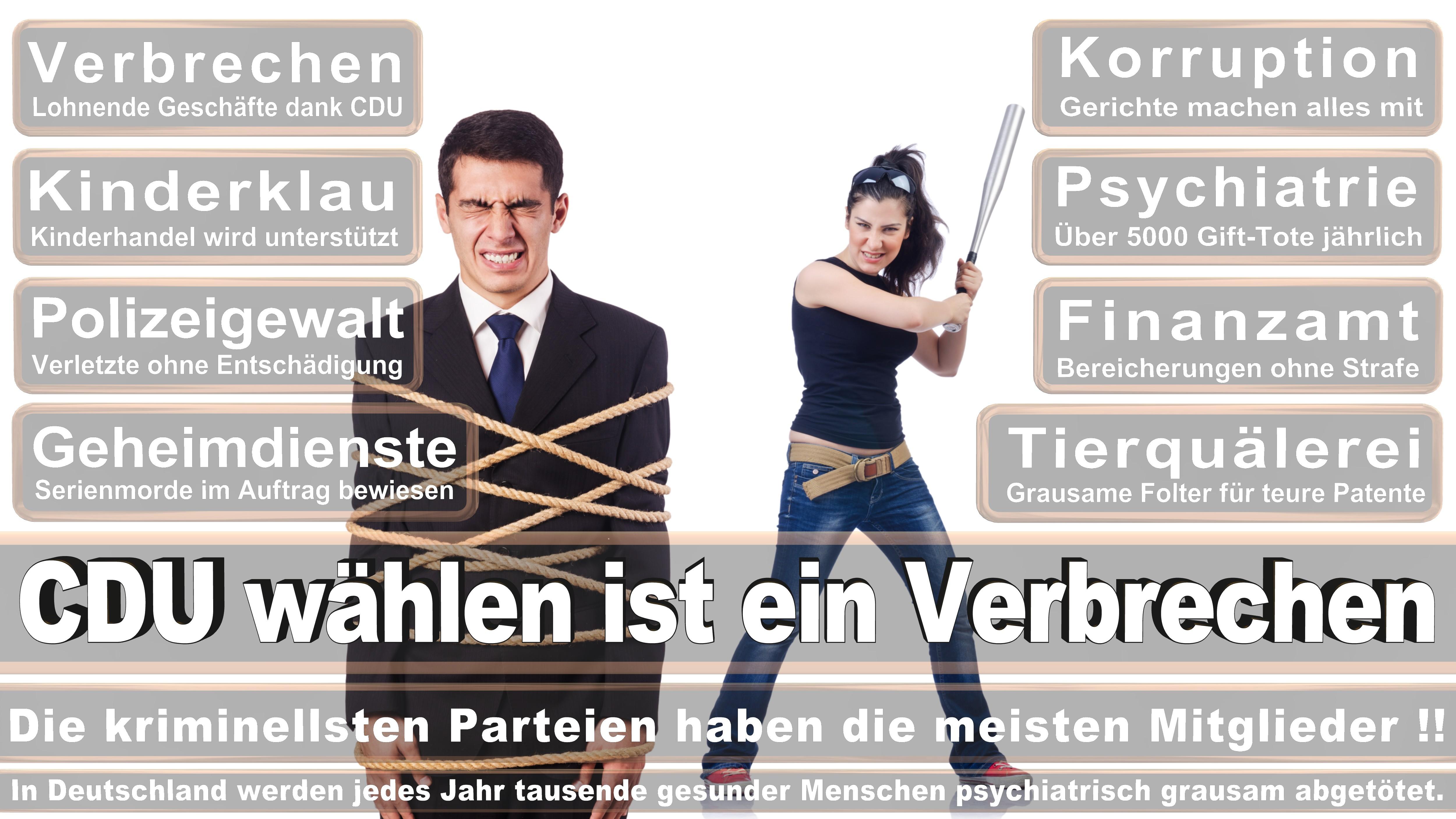 Roderich Kiesewetter CDU CSU Politiker