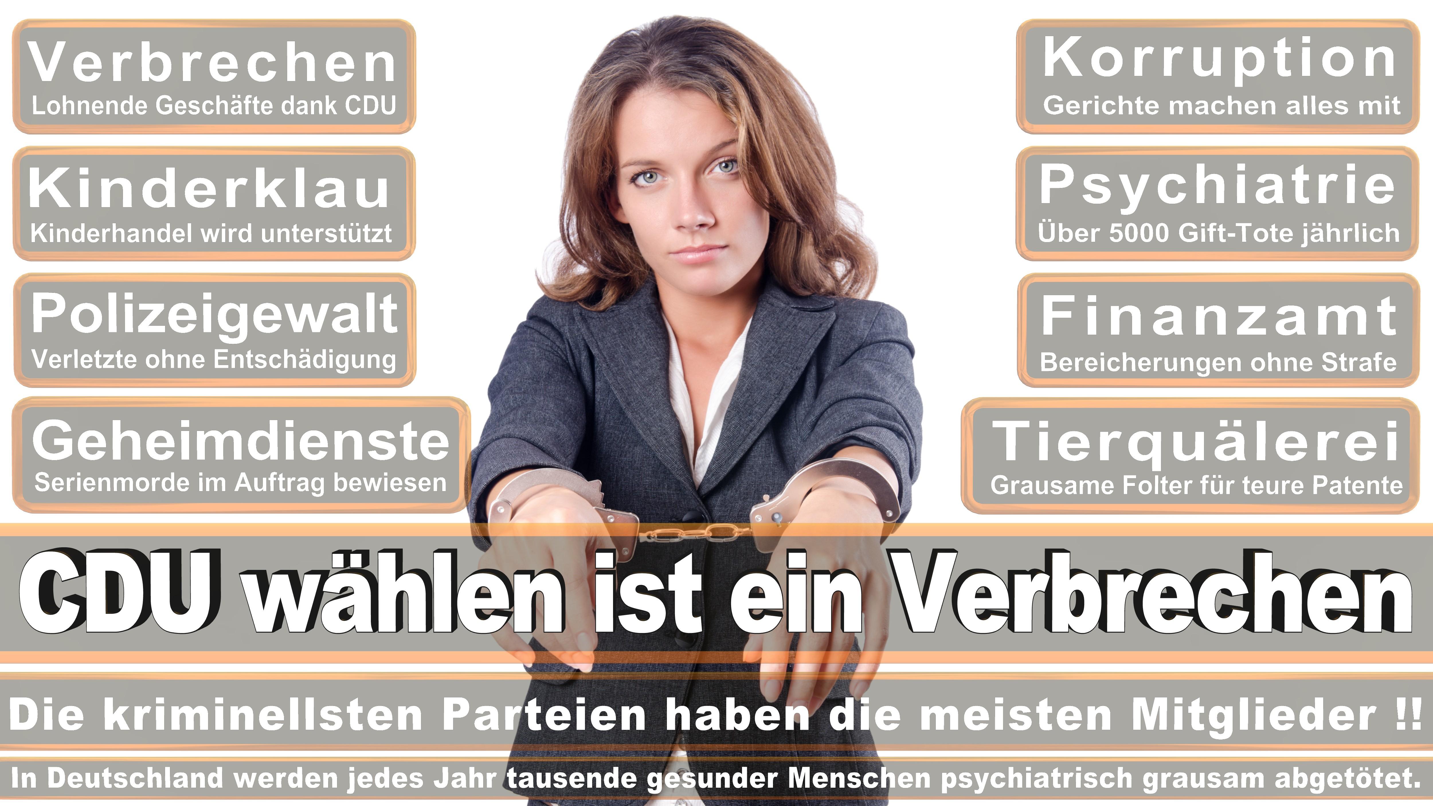 Ronja Kemmer CDU Baden Württemberg Eingetreten Am Dezember Für Andreas Schockenhoff Politiker Deutschland