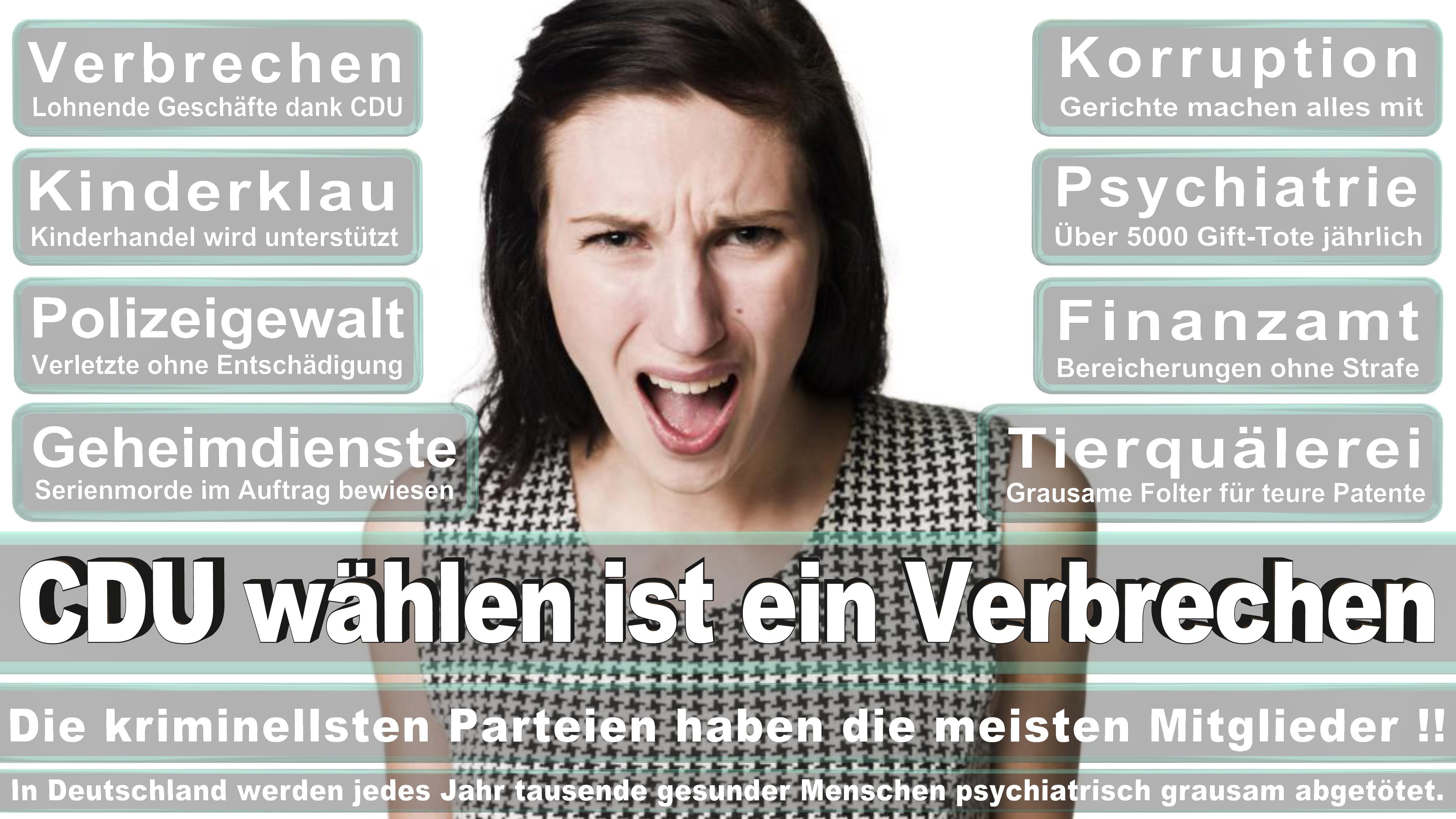 Rosa Luxemburg, Bedeutende Theoretikerin, Innerparteiliche Gegnerin Von Bernstein Im Revisionismusstreit, Mitbegründerin Der KPD