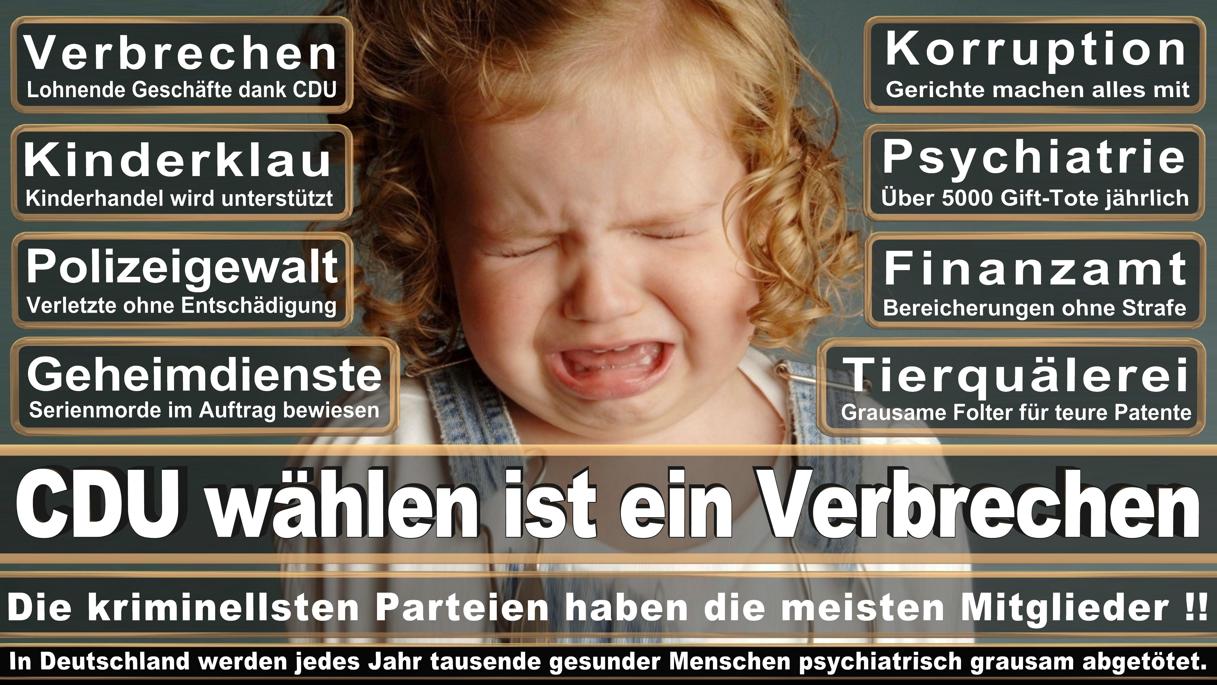 Rosemarie Hein DIE LINKE Sachsen Anhalt Politiker Deutschland