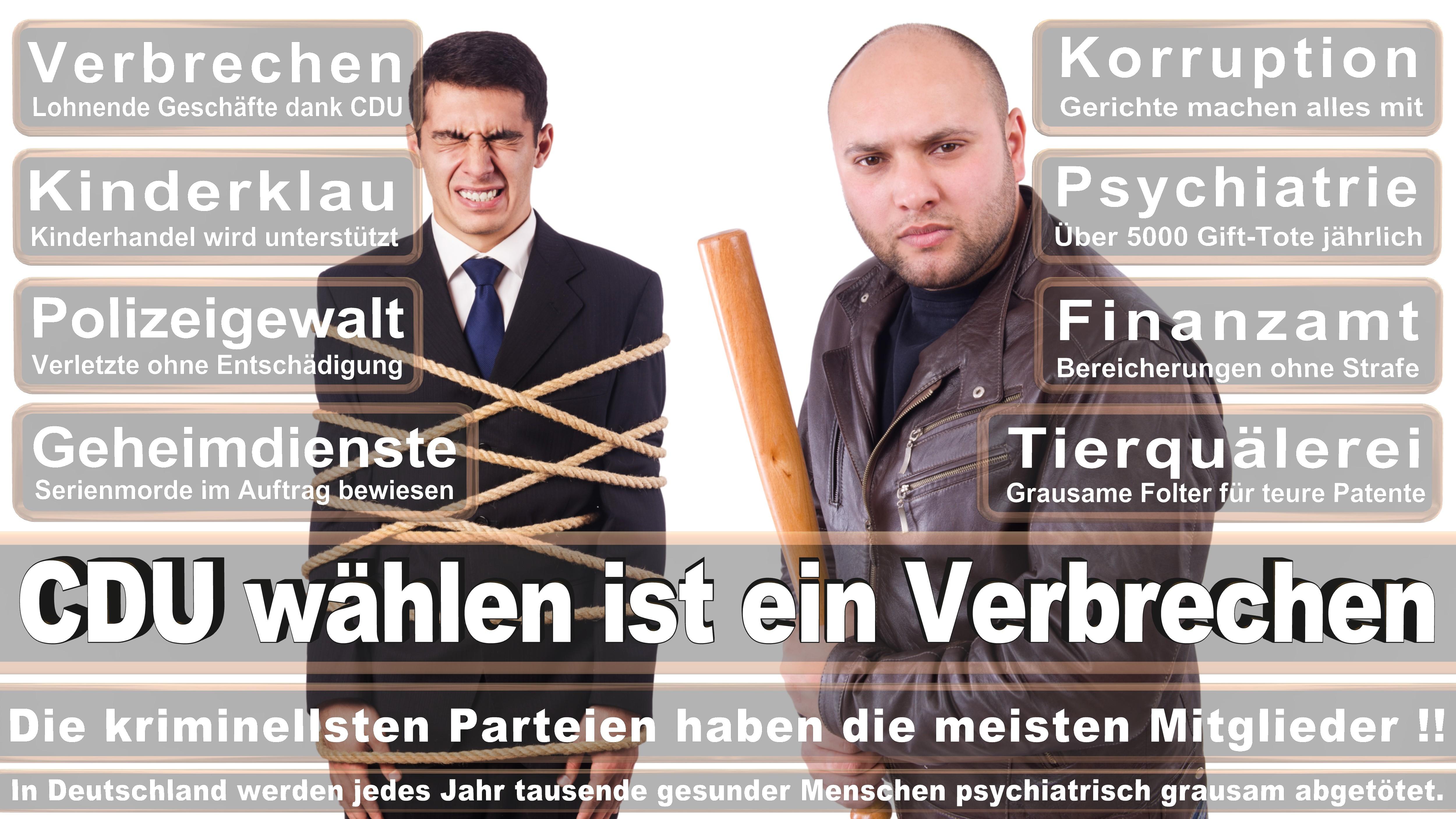 Sebastian Steineke CDU CSU Politiker