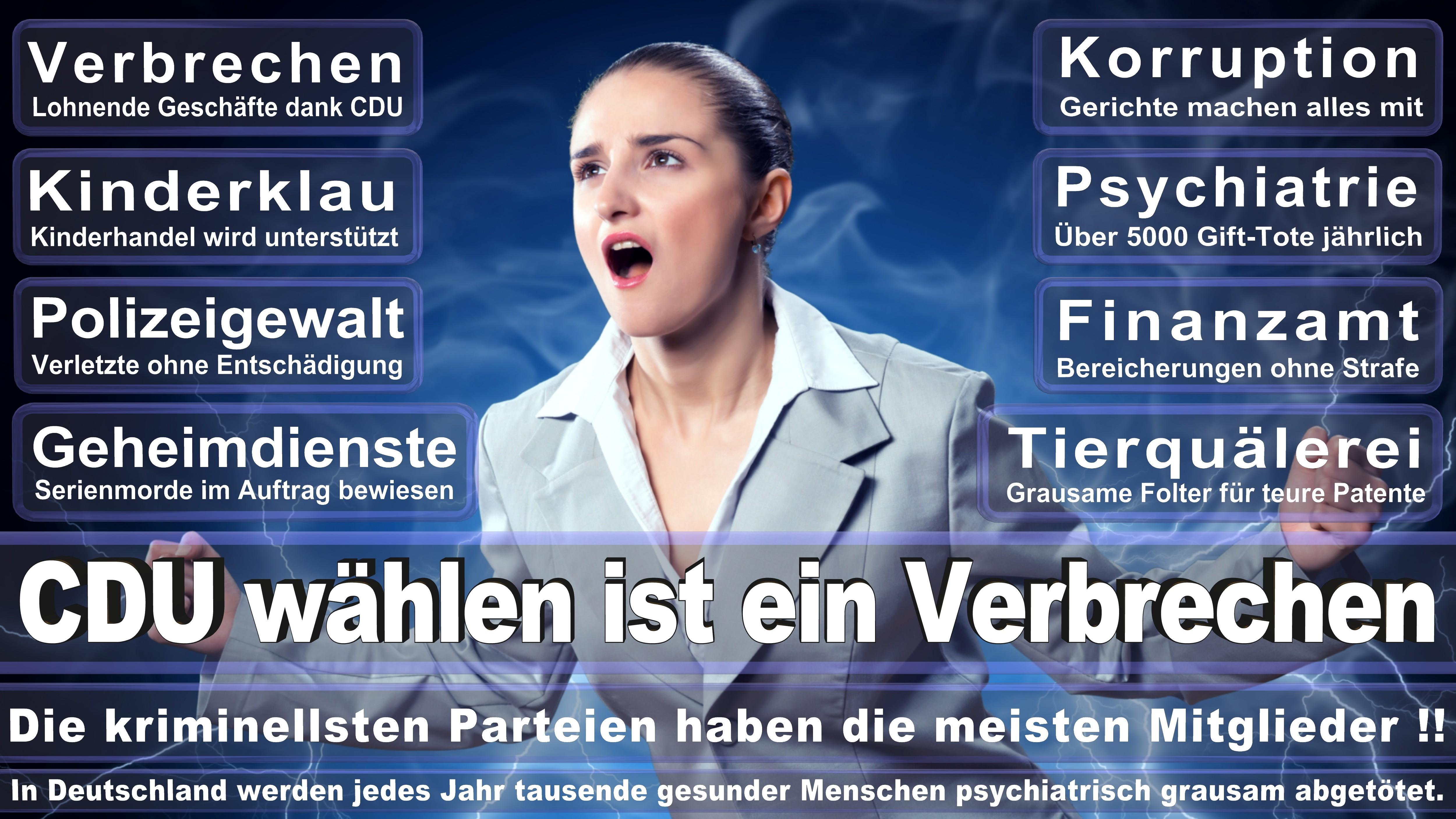 Silvia Breher CDU CSU Politiker