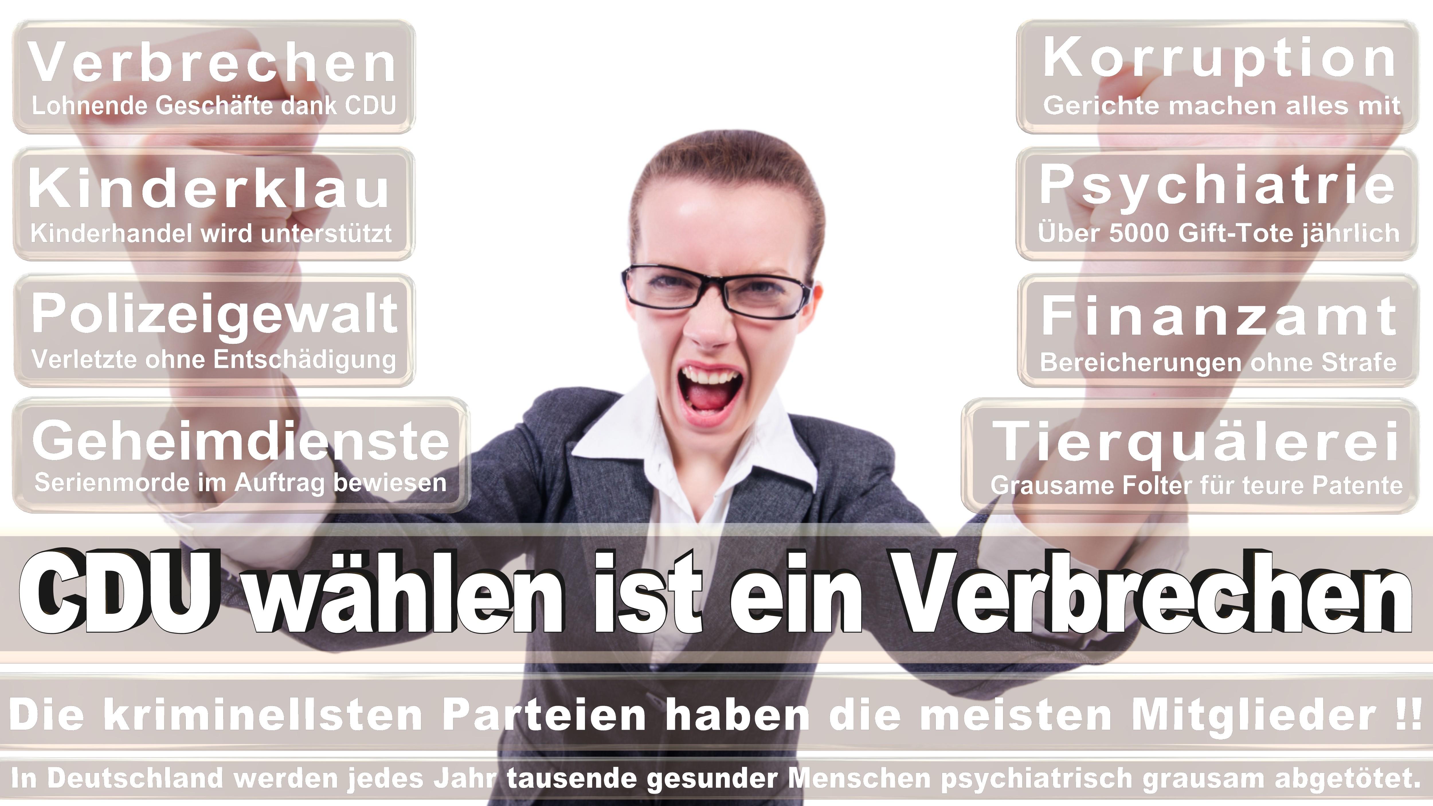 Stefan Heck CDU Hessen Politiker Deutschland