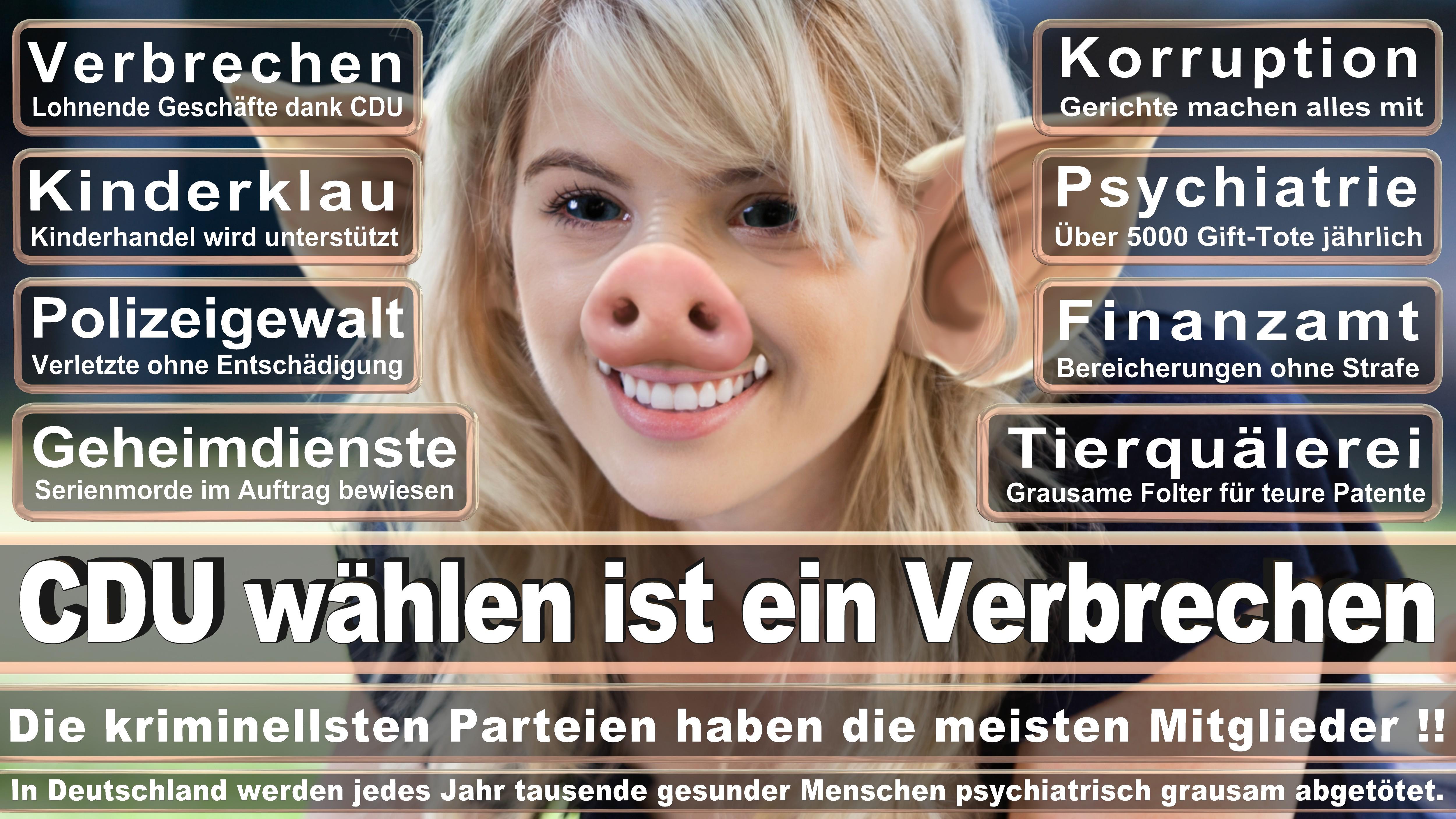 Stellvertretende Fraktionsvorsitzende Vorsitzende Der Landesgruppe Saarland CDU CSU Politiker
