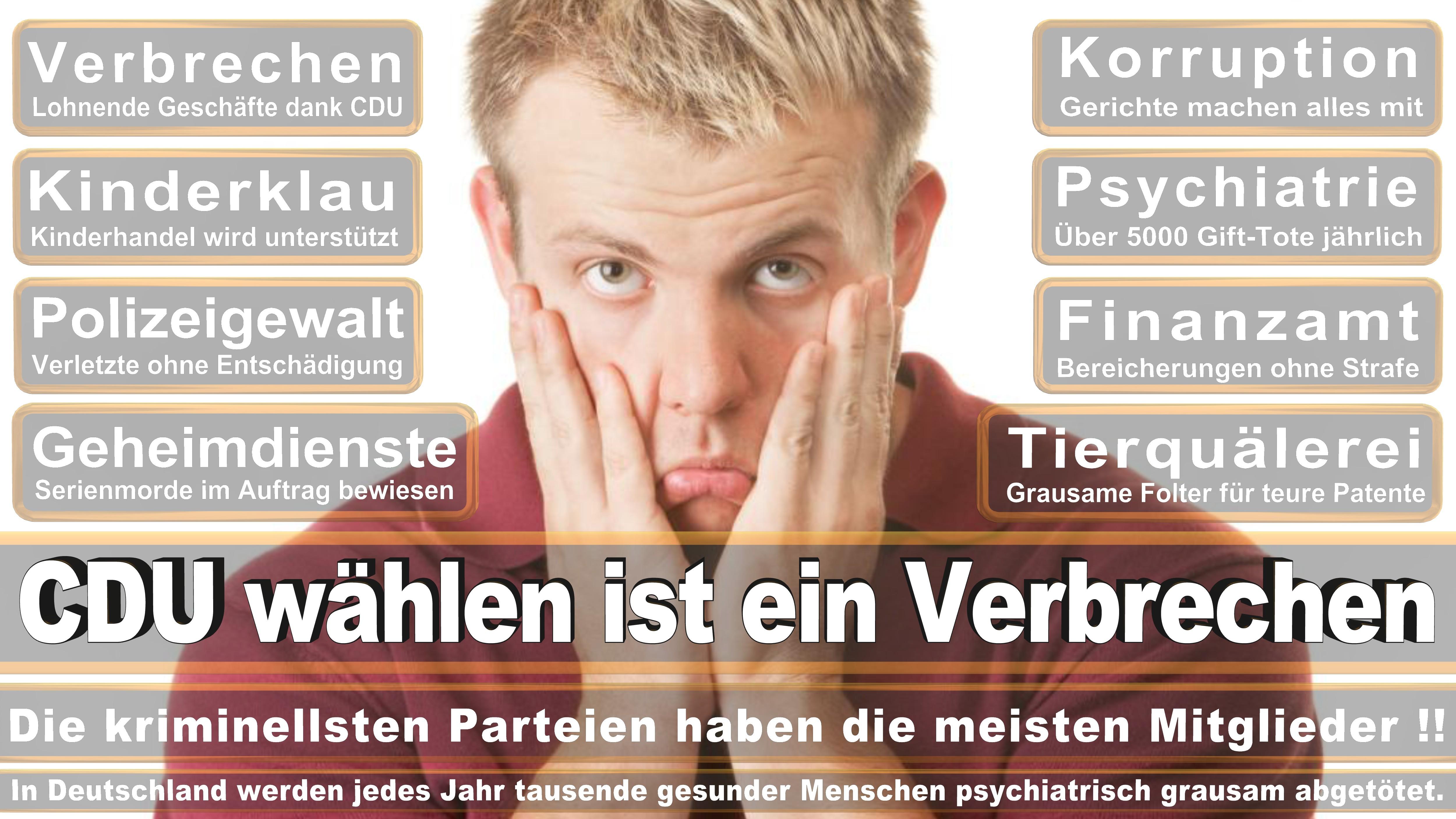 Stellvertretender Fraktionvorsitzender Vorsitzender Der Landesgruppe CDU CSU Politiker