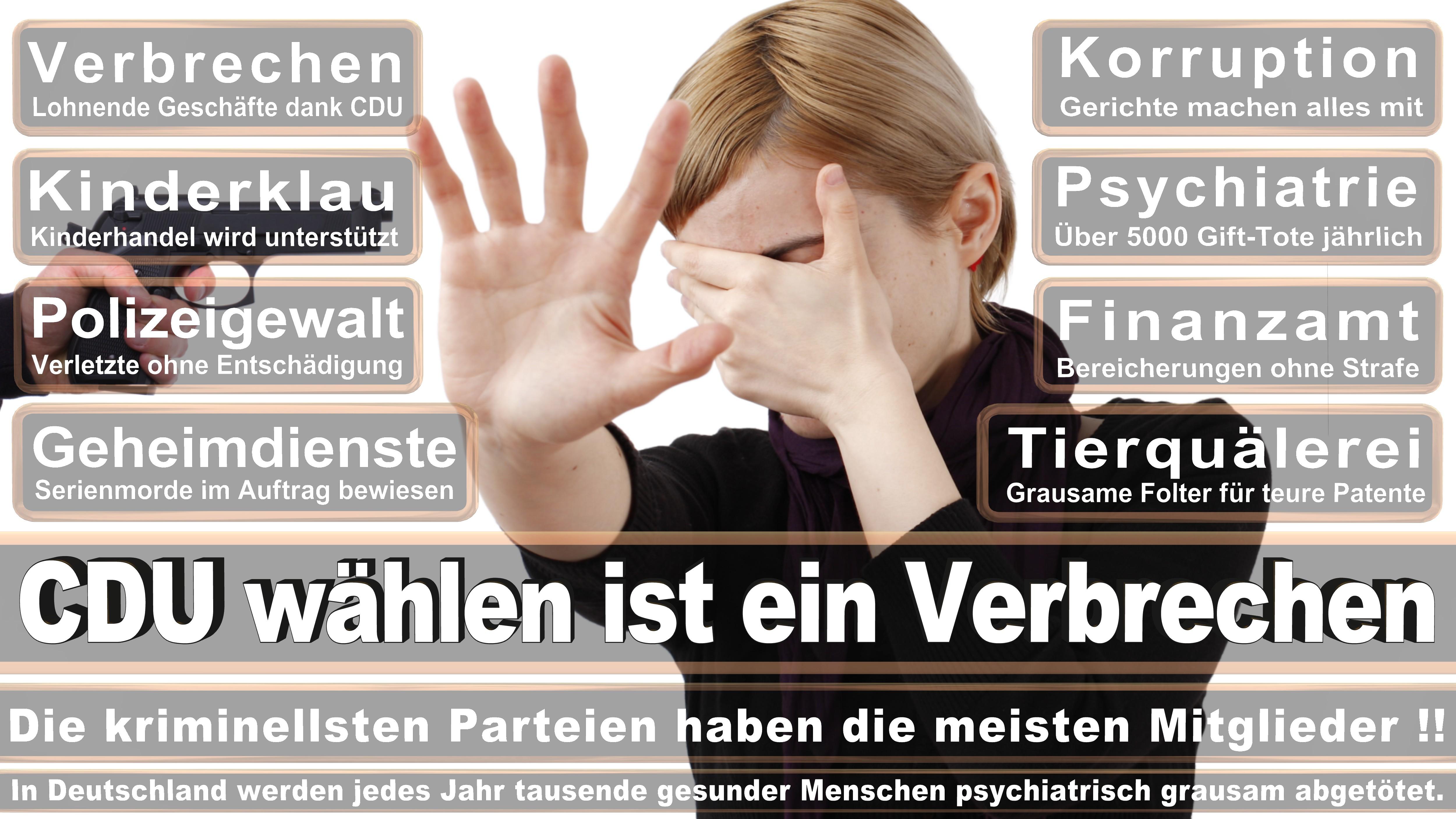 Stellvertreter Des Ersten Parlamentarischen Geschäftsführers CDU CSU Politiker