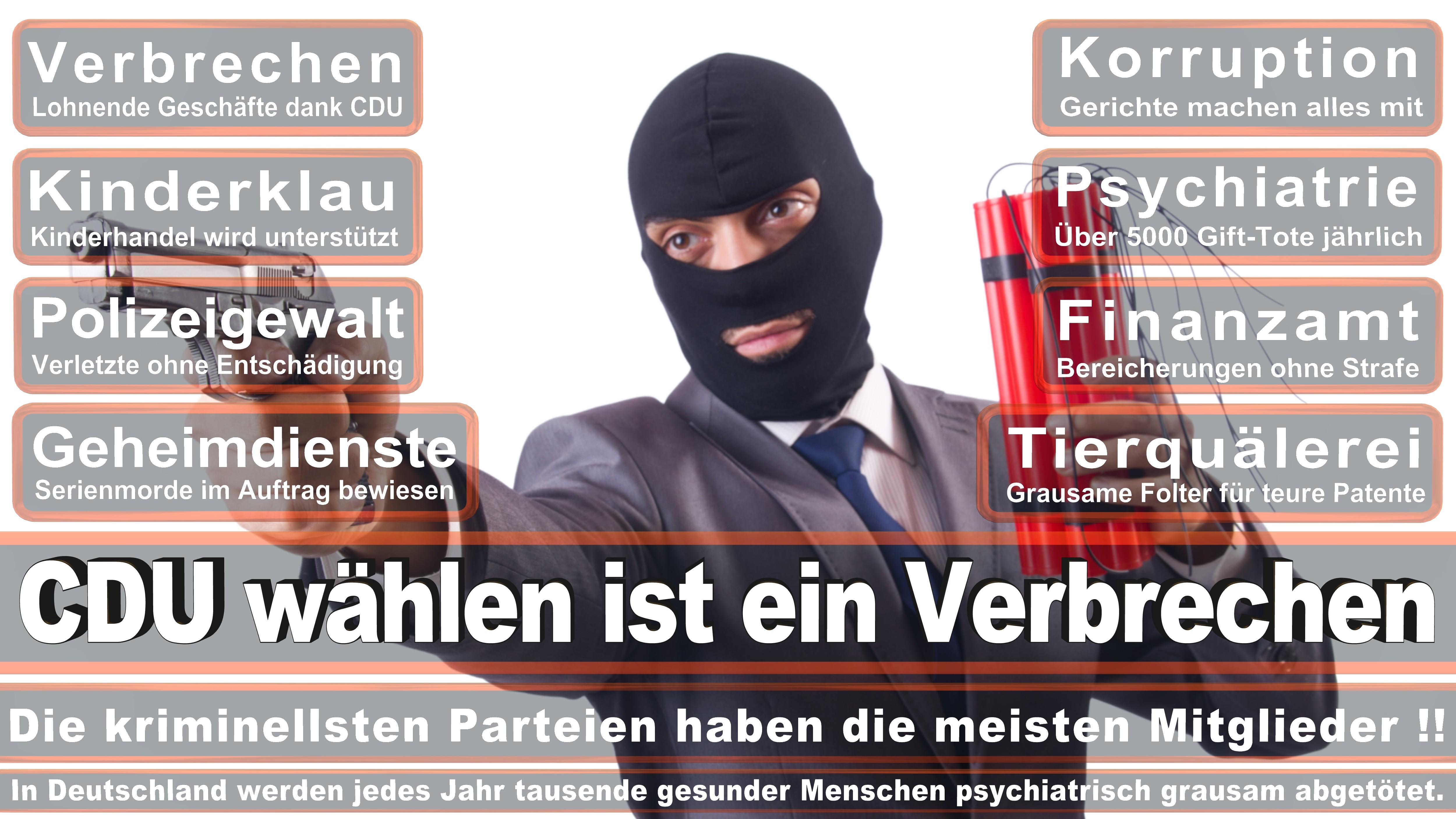 Stephan Mayer CDU CSU Politiker