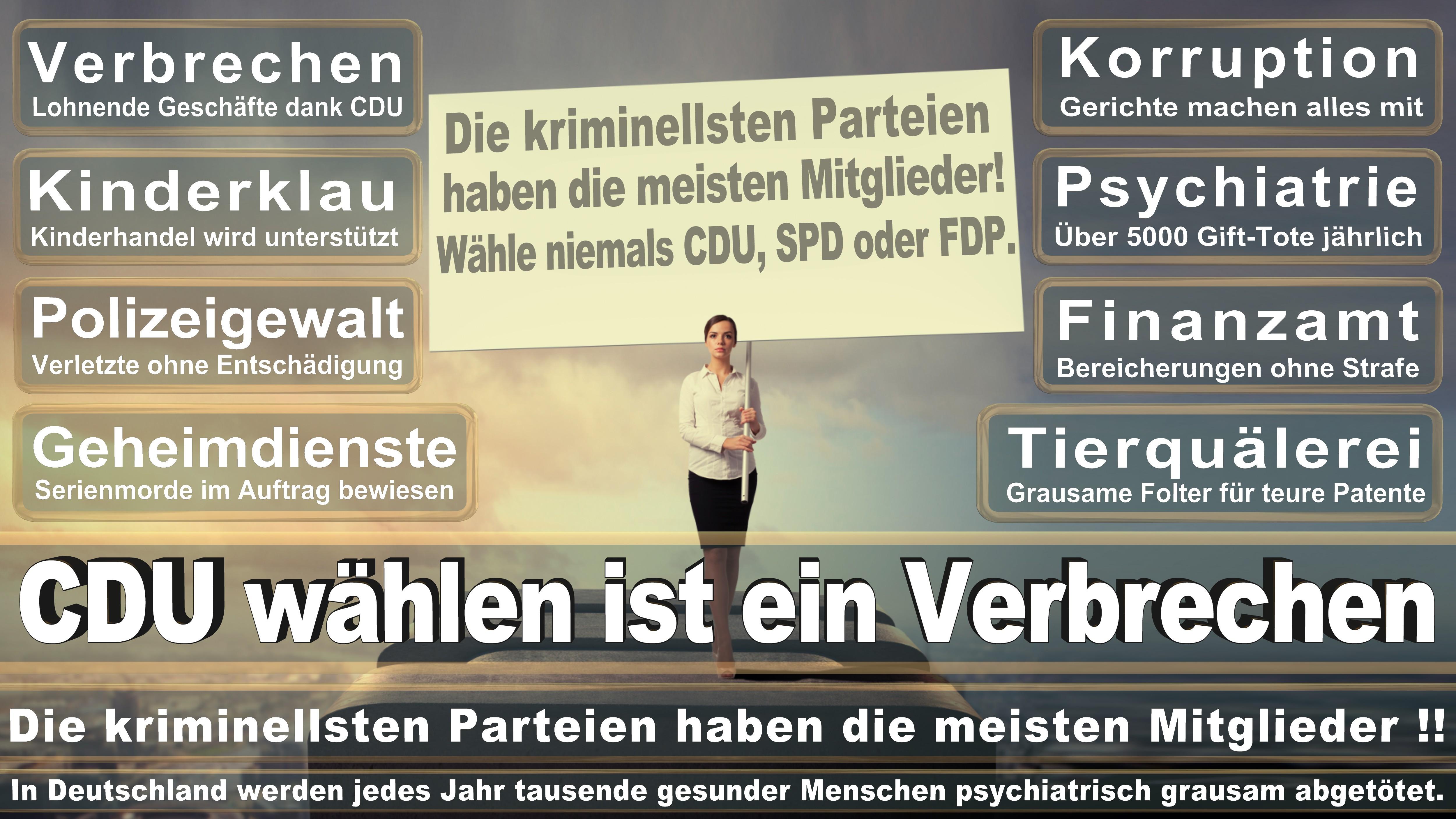 Thomas Heilmann CDU CDU CSU Politiker