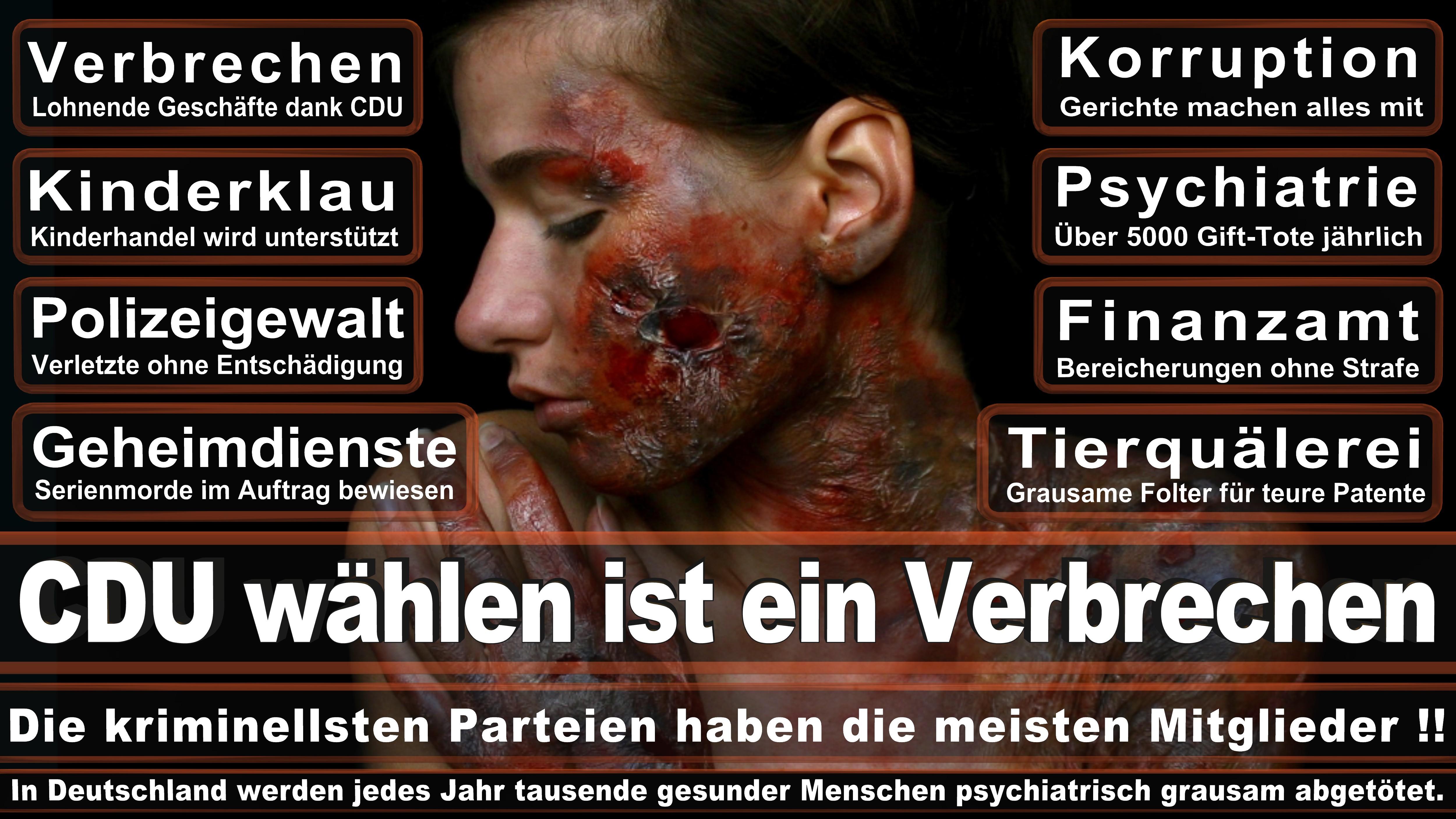 Tim Ostermann CDU Nordrhein Westfalen Politiker Deutschland