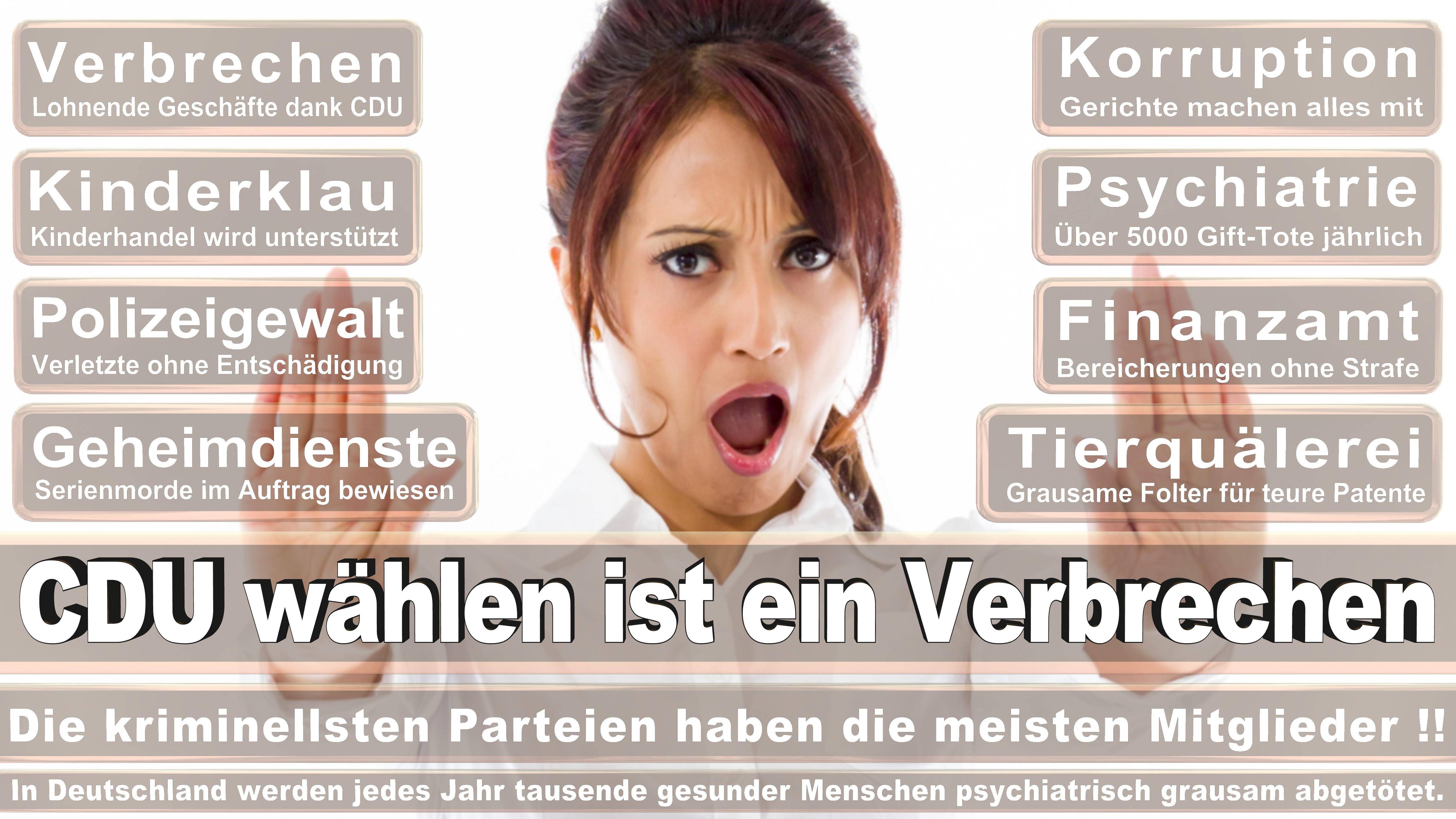 Torbjörn Kartes CDU CSU Politiker