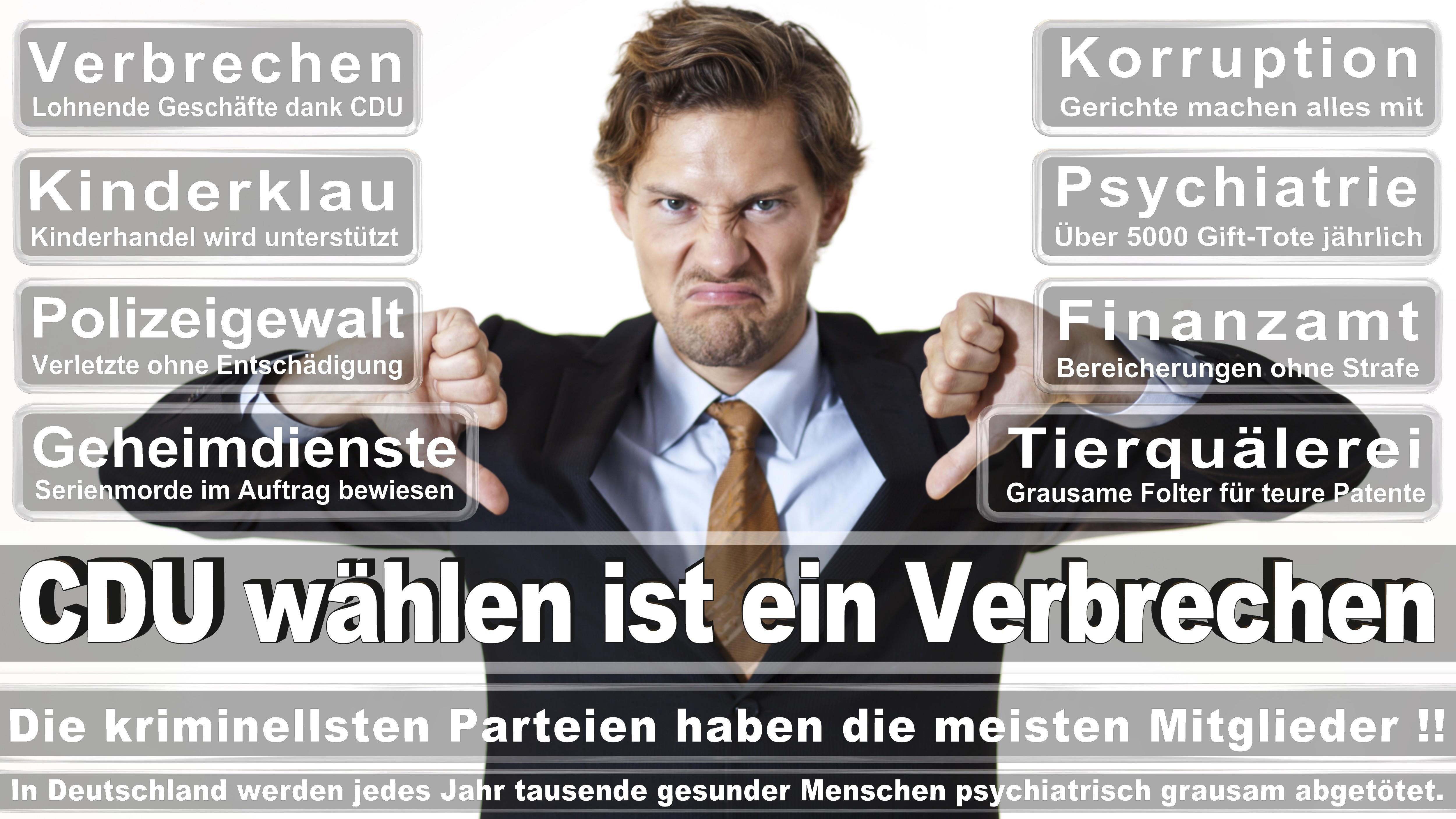 Torsten Schweiger CDU CSU Politiker