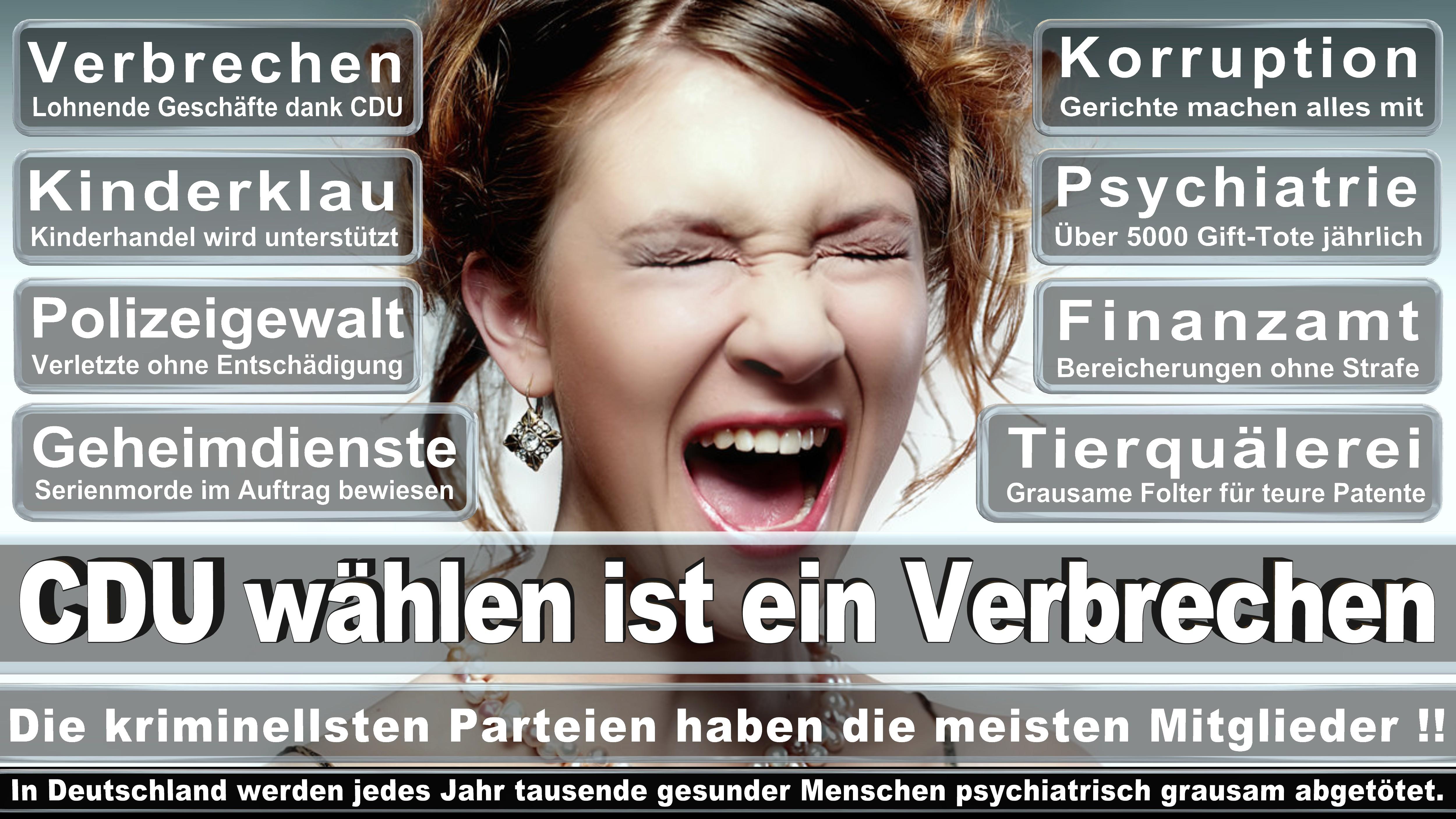 Volkmar Klein CDU CSU Politiker