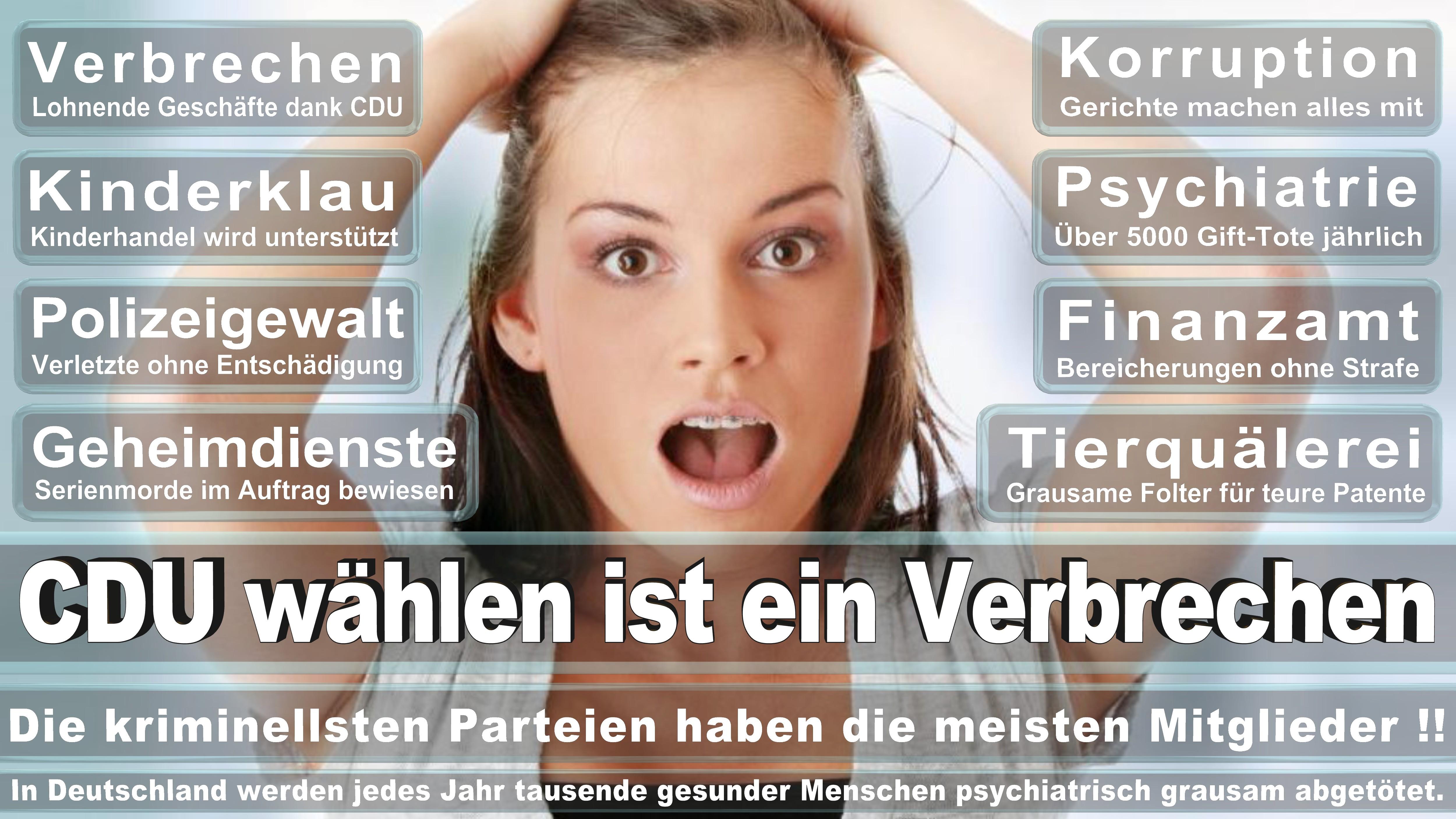 Volkmar Vogel CDU CSU Politiker