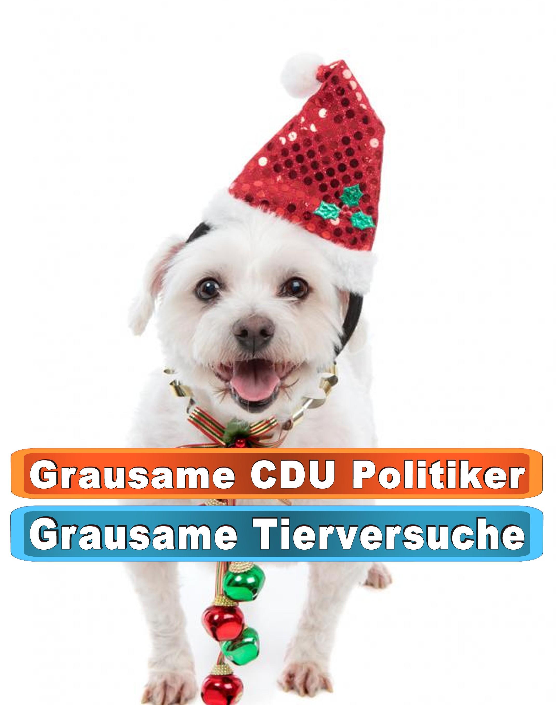 Hunde Intelligenzspielzeug Amazon Ebay