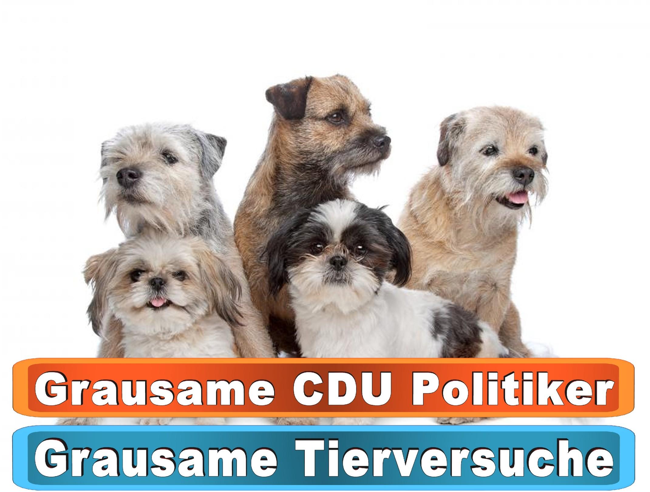 Hunde Kuscheldecke Dawanda