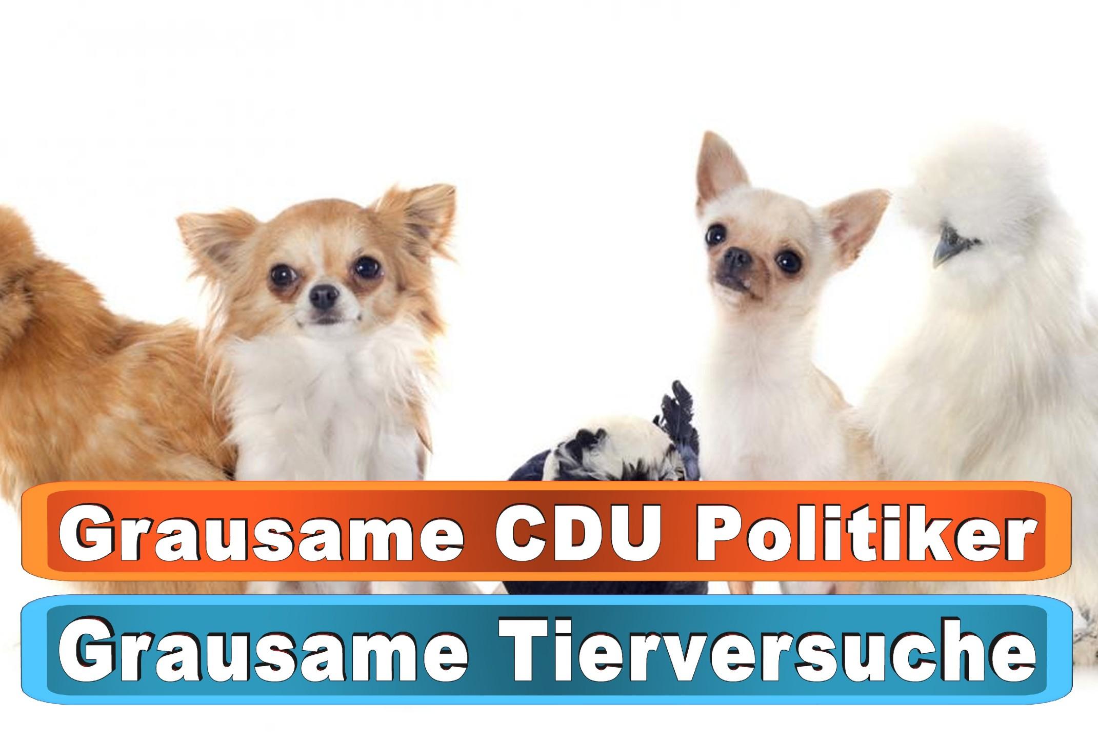 Hunde Leberwurst Amazon