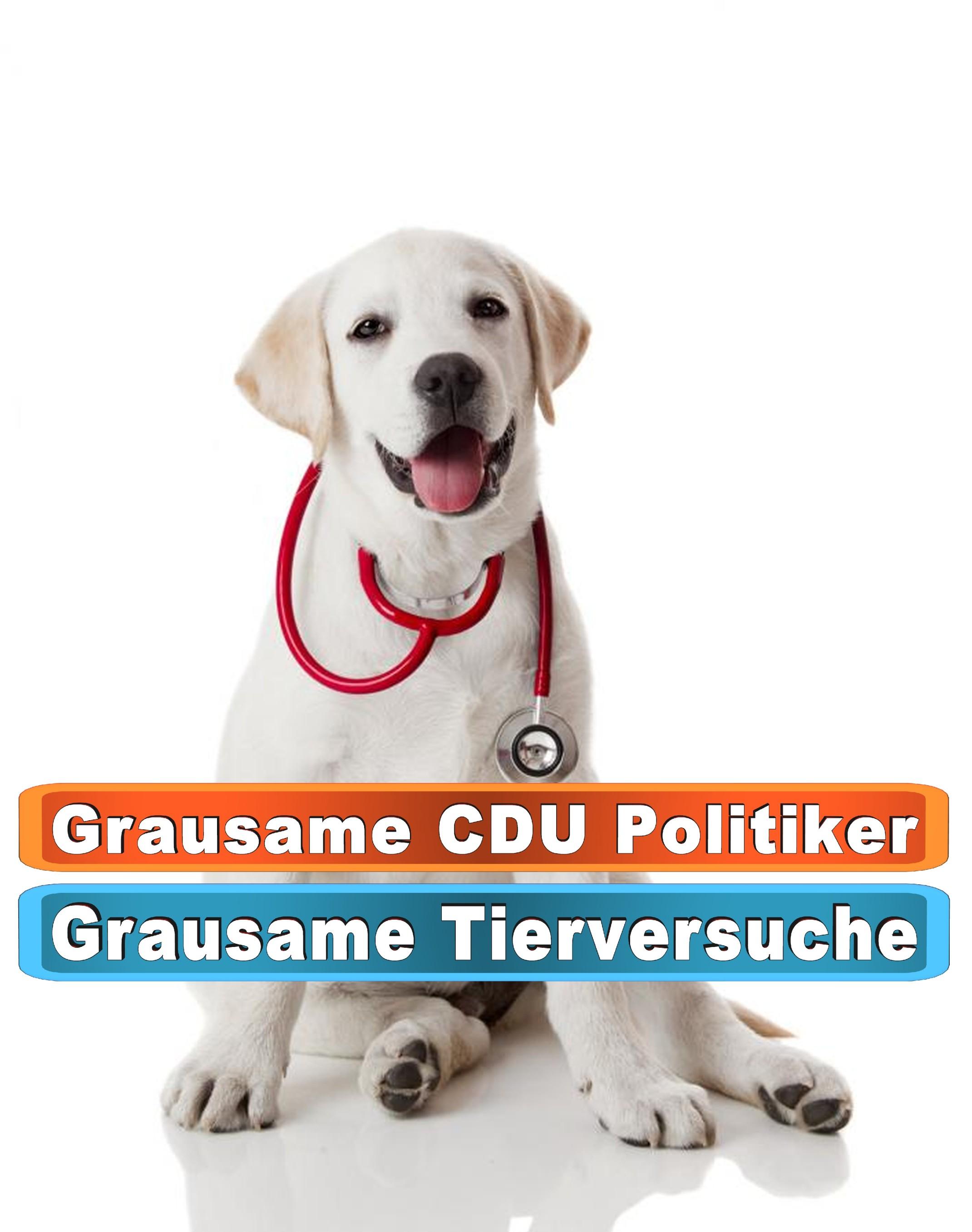 Hunde Leuchthalsband Usb Ebay