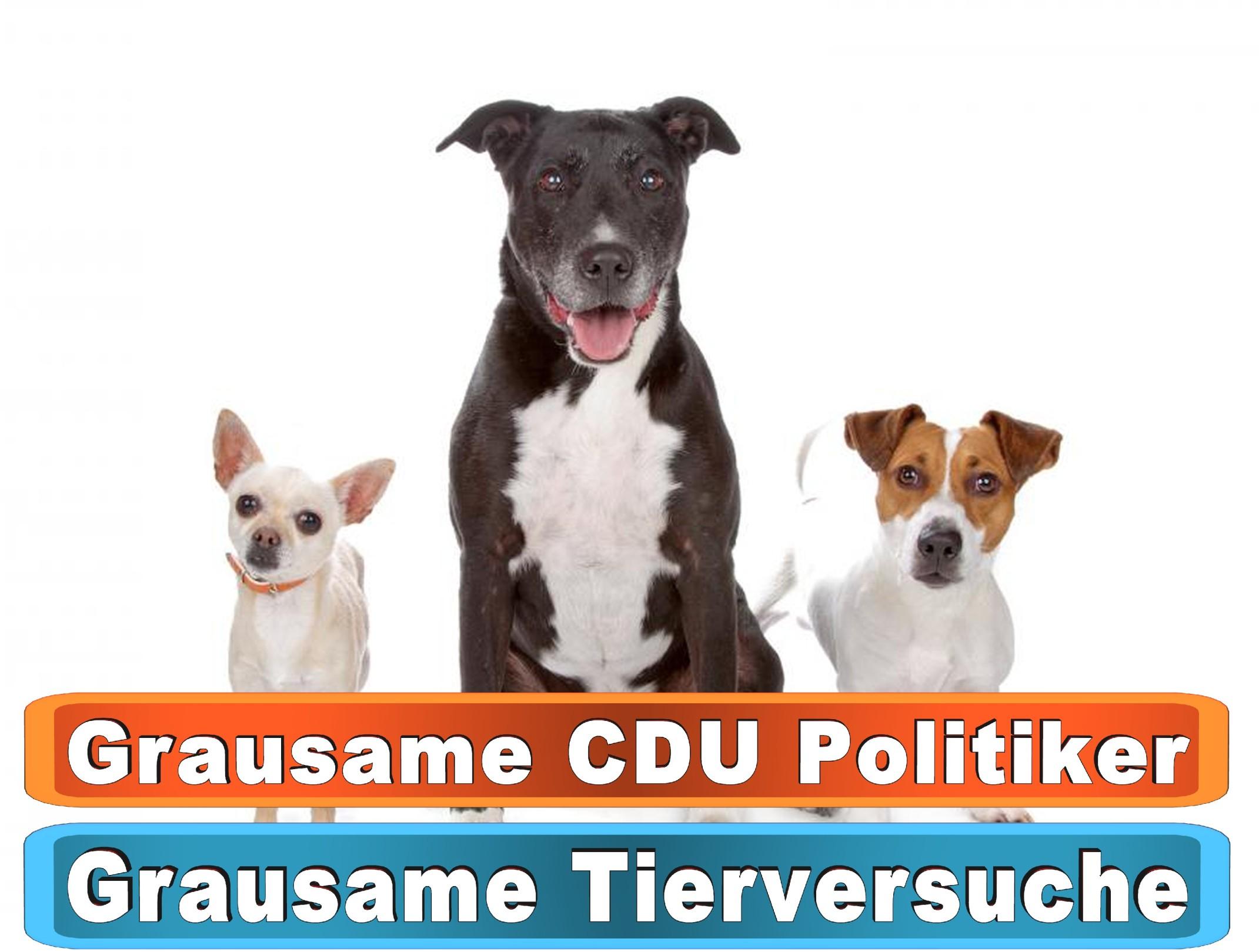 Hunde Loopschal Dawanda
